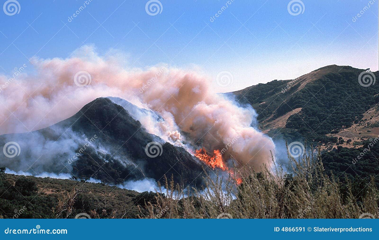 άγρια περιοχές πυρκαγιάς