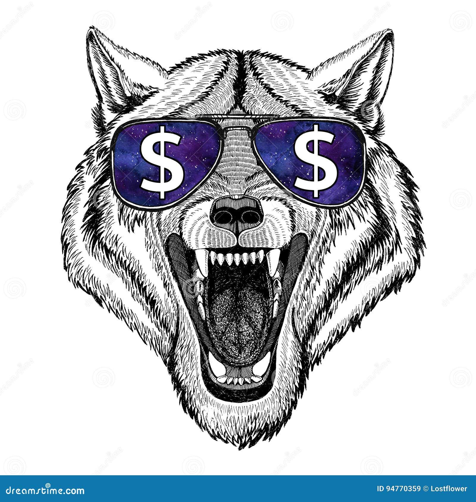 Άγριο ζώο σκυλιών λύκων που φορά τα γυαλιά με το σημάδι δολαρίων