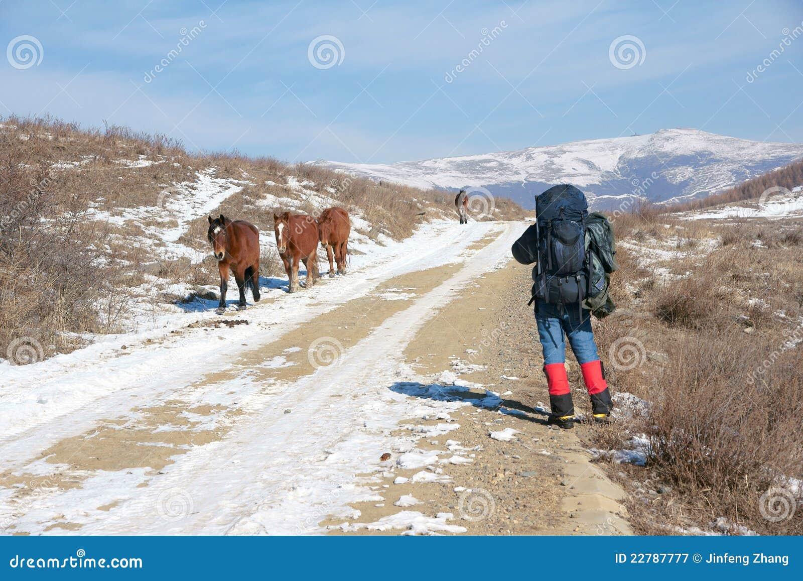 άλογα οδοιπόρων
