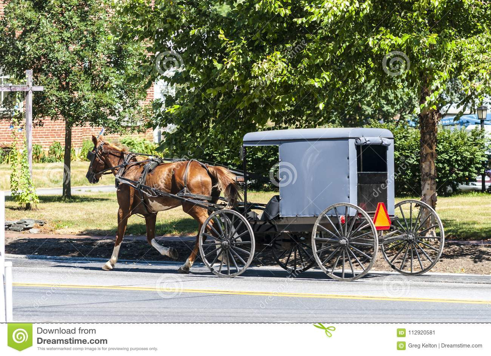 Άλογο Amish και με λάθη μια ηλιόλουστη θερινή ημέρα