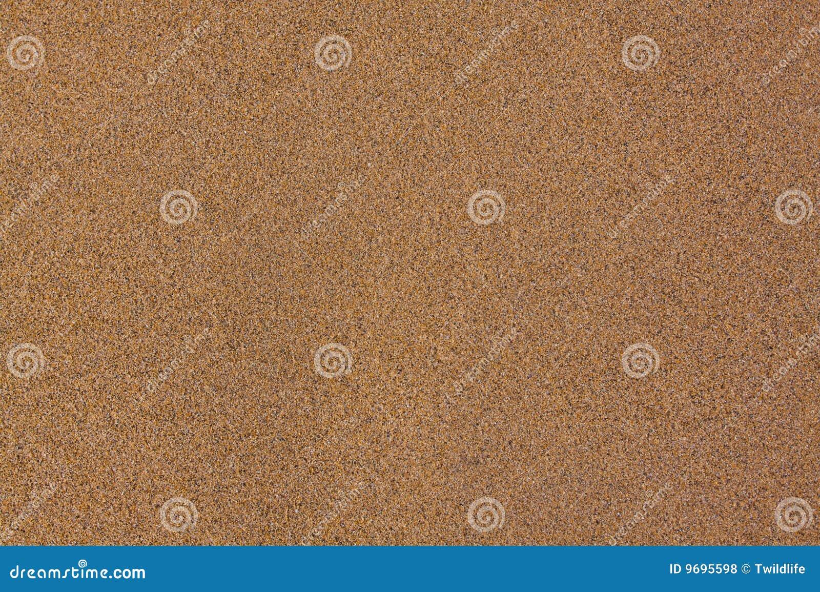 άμμος ανασκόπησης