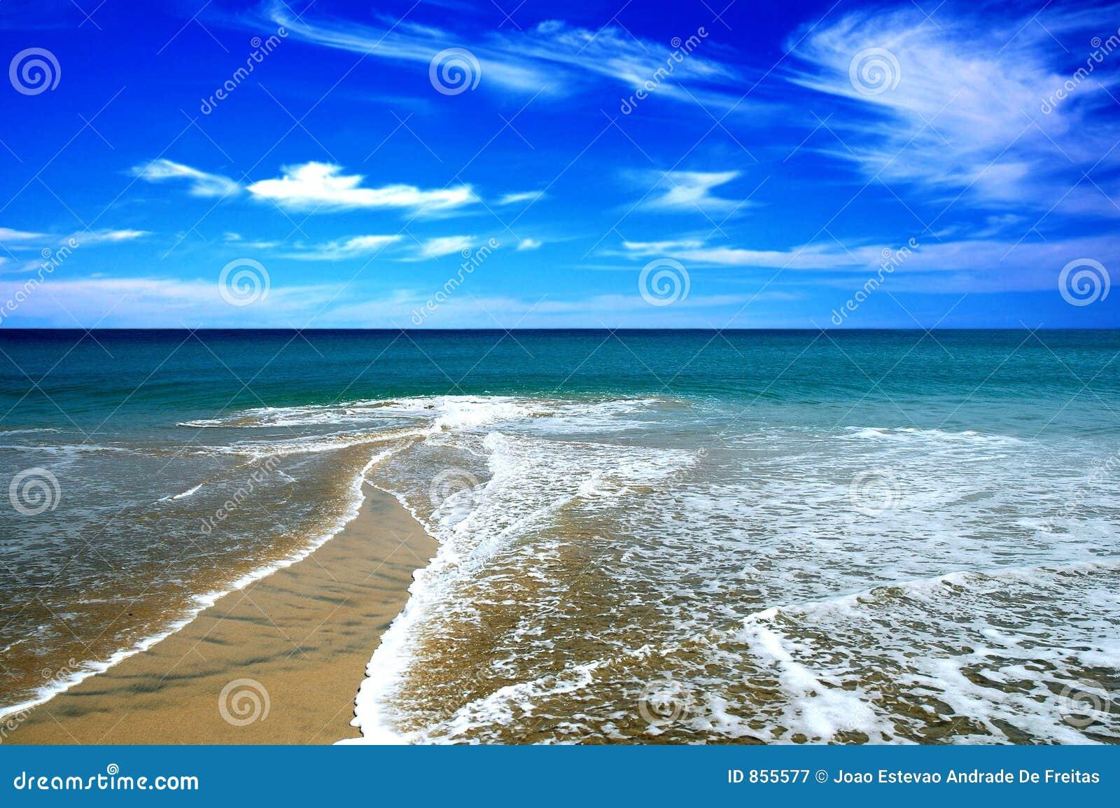 άμμος παραλιών