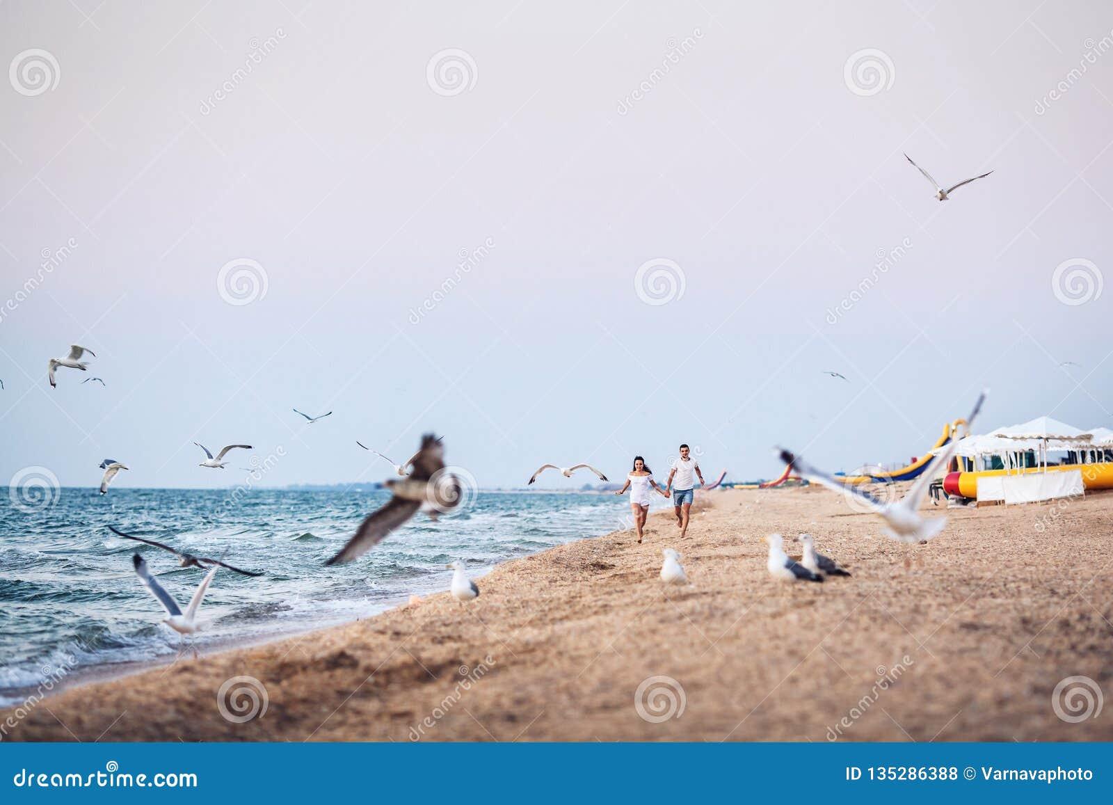 Άνδρας και γυναίκα που οργανώνονται κατά μήκος των θαλασσοπουλιών ακτών και τρόμου μακριά