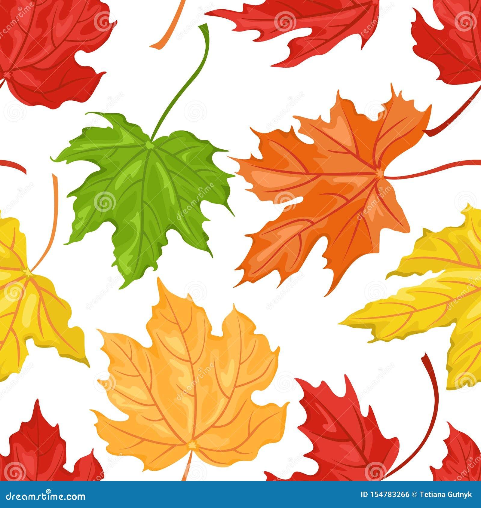 Άνευ ραφής σχέδιο με χρωματισμένα τα φθινόπωρο φύλλα σφενδάμου