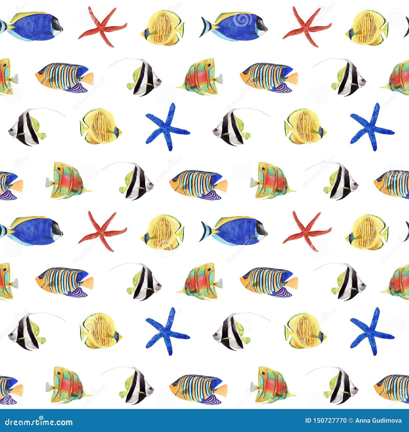 Άνευ ραφής σχέδιο Watercolor με τα ζωηρόχρωμους τροπικούς ψάρια και τον αστερία στο άσπρο υπόβαθρο