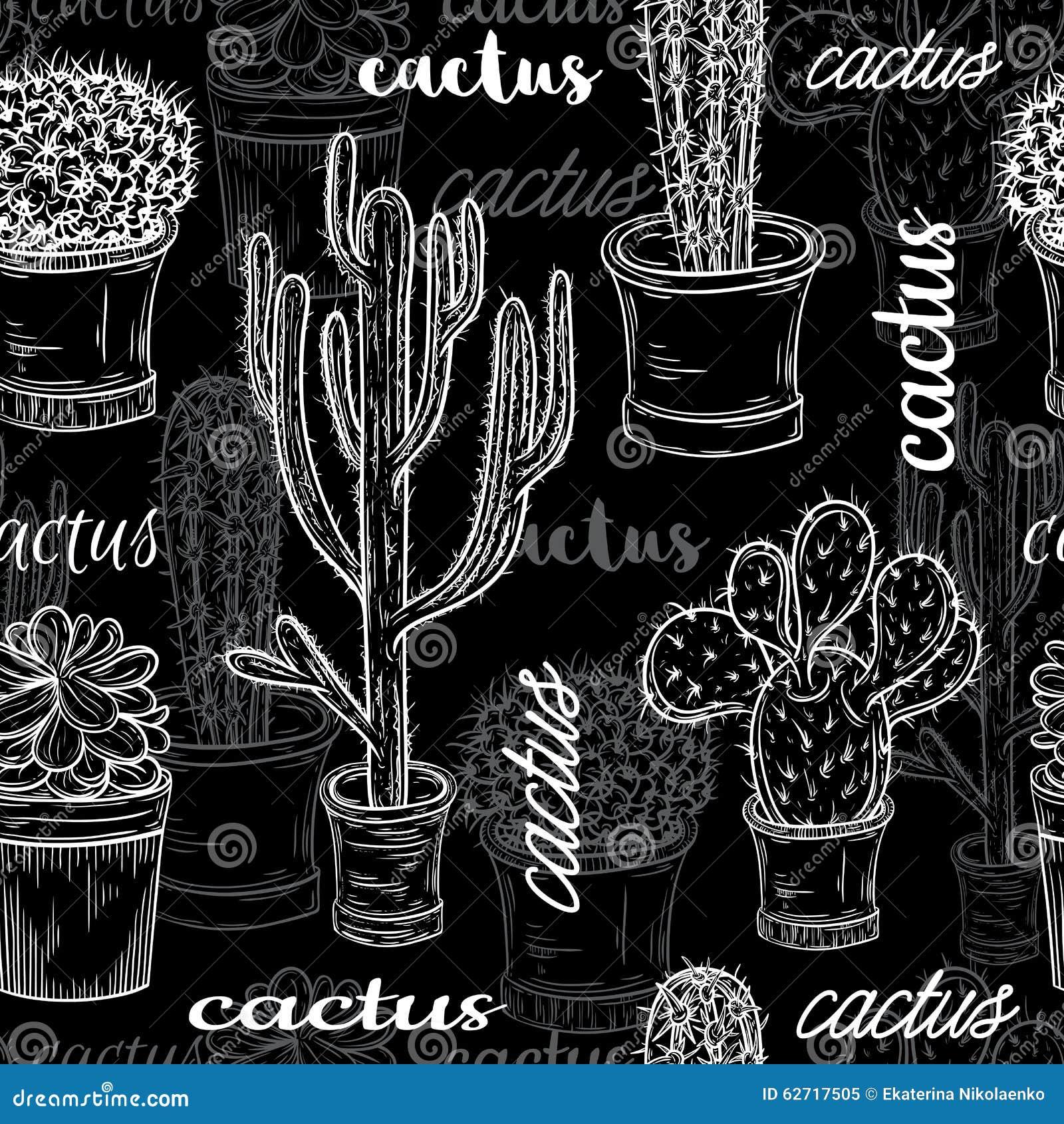 Άνευ ραφής σχέδιο με την επίπεδη γραπτή απεικόνιση πινάκων κιμωλίας των succulent εγκαταστάσεων και των κάκτων στα δοχεία