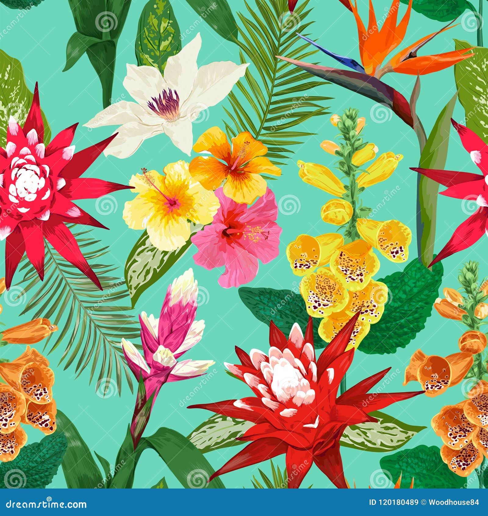 άνευ ραφής τροπικός προτύπ&omeg Θερινό Floral υπόβαθρο με το λουλούδι και Hibiskus κρίνων τιγρών Σχέδιο άνθισης