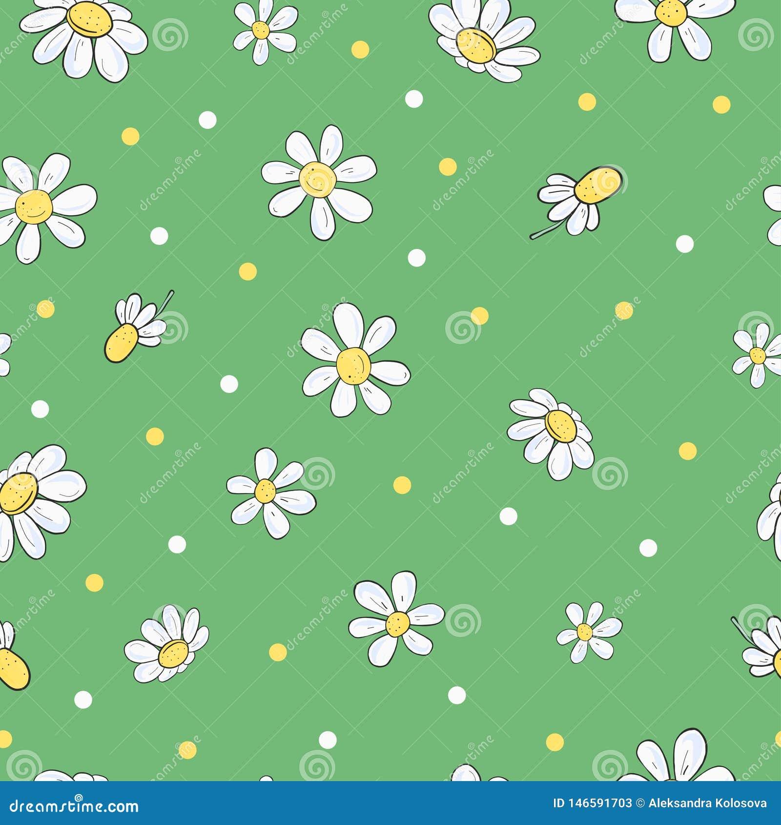 Άνευ ραφής floral σχέδιο με τα chamomile λουλούδια