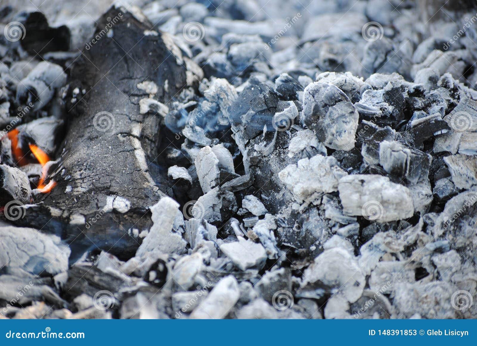 Άνθρακες από μια εκλειψίδα πυρκαγιά