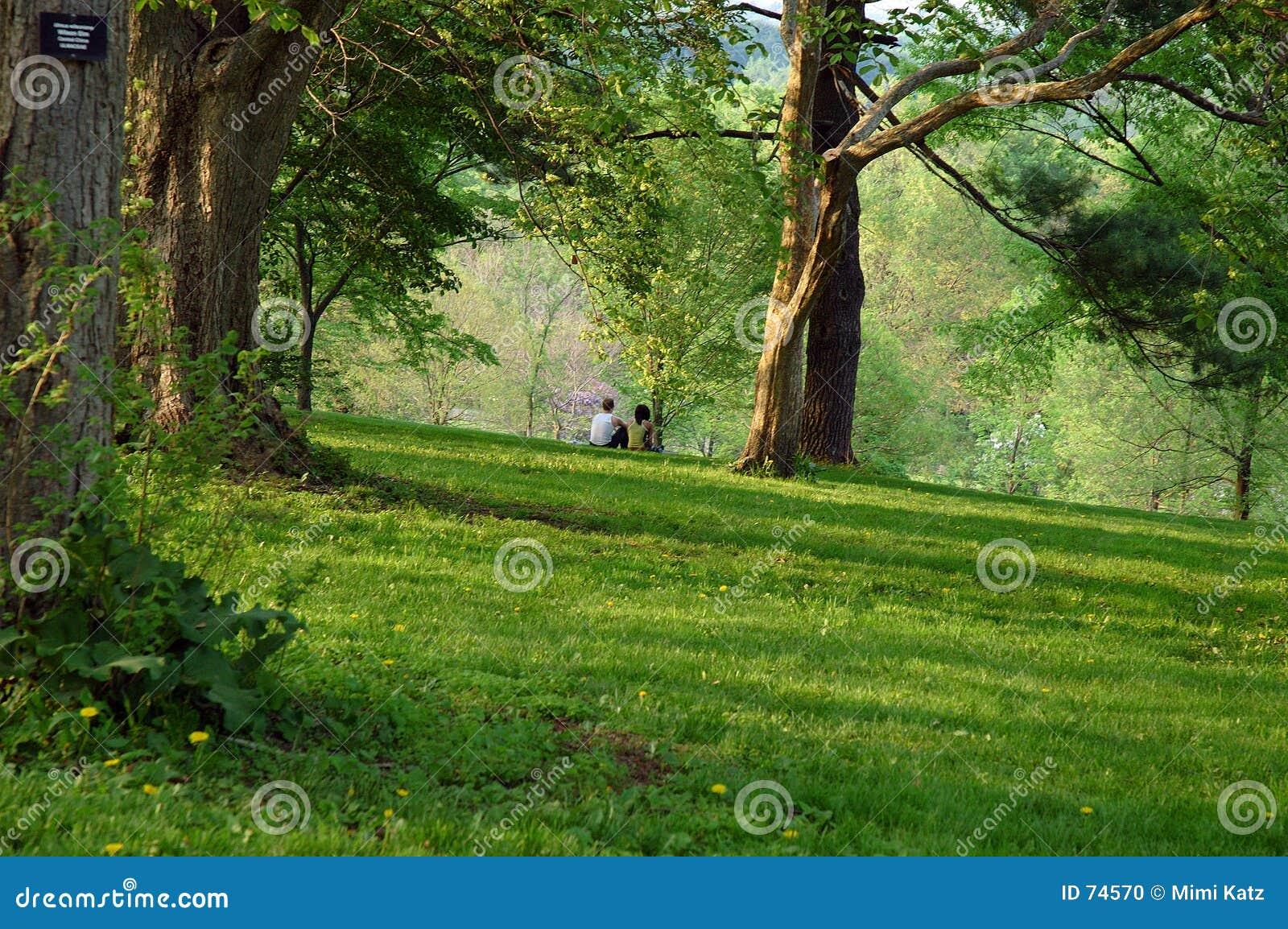 άνοιξη δενδρολογικών κήπων