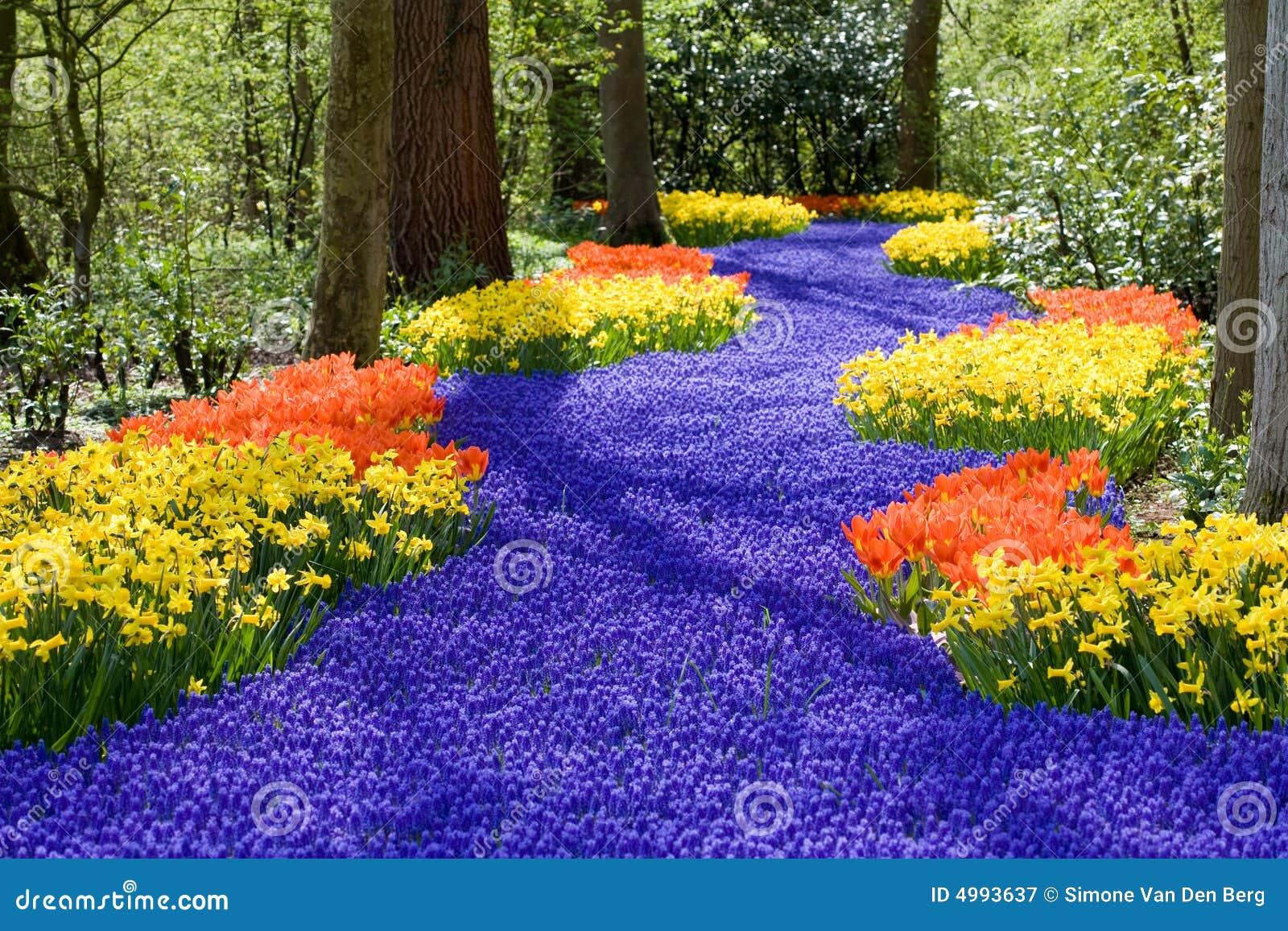 άνοιξη λουλουδιών