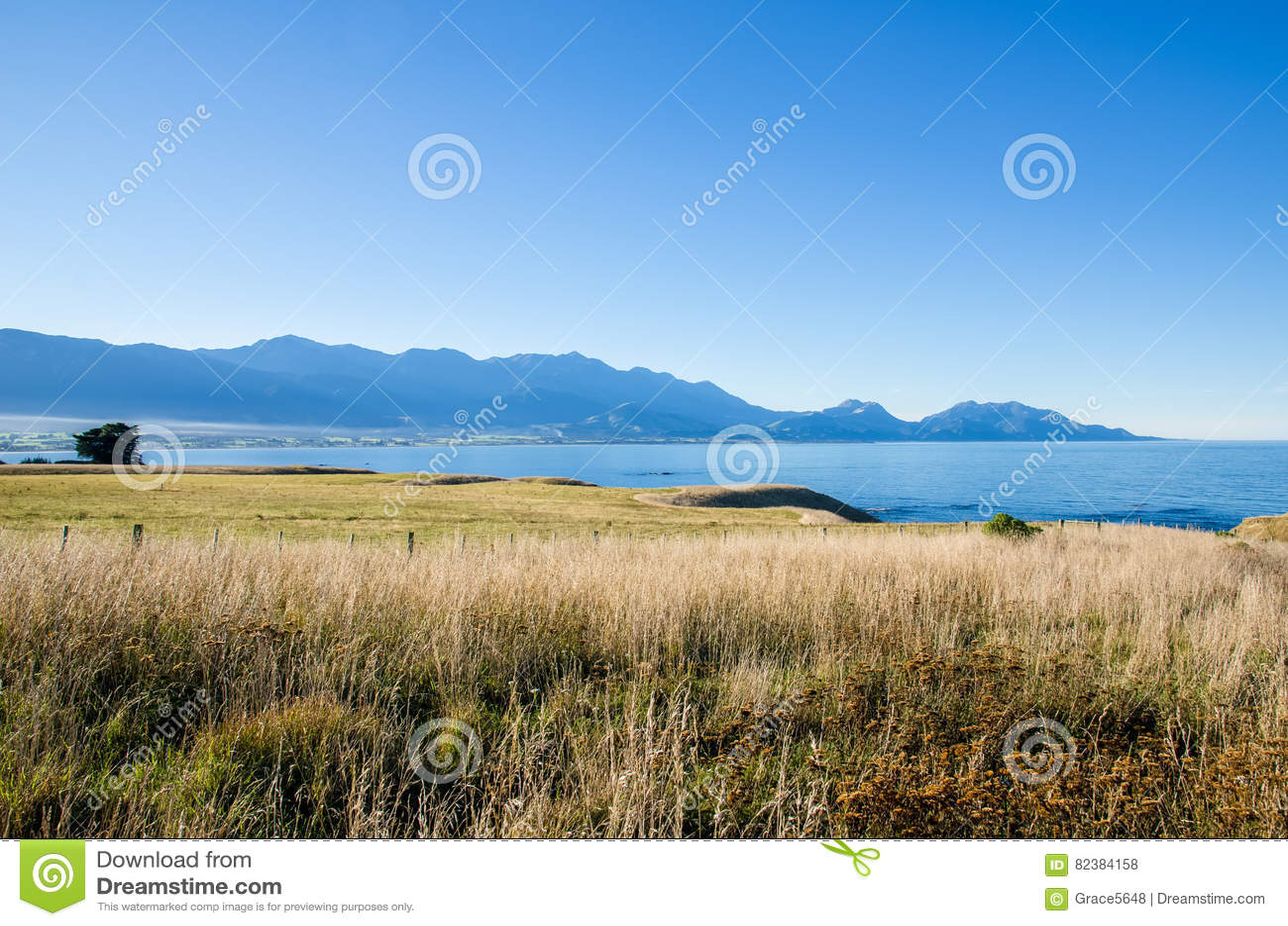 Άποψη από την άποψη Kean σημείου, Kaikoura Νέα Ζηλανδία