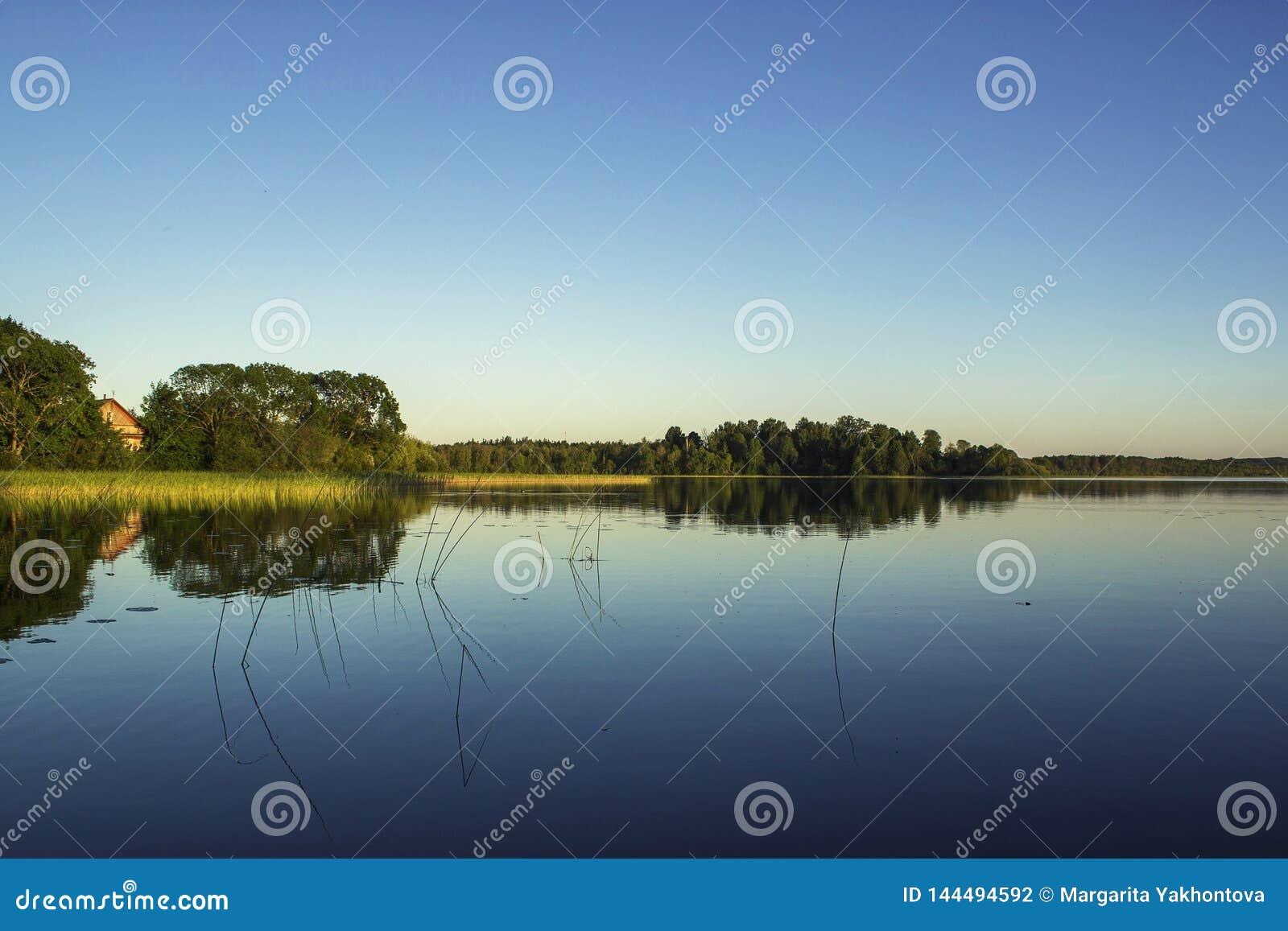 Άποψη από την ακτή στη λίμνη το καλοκαίρι