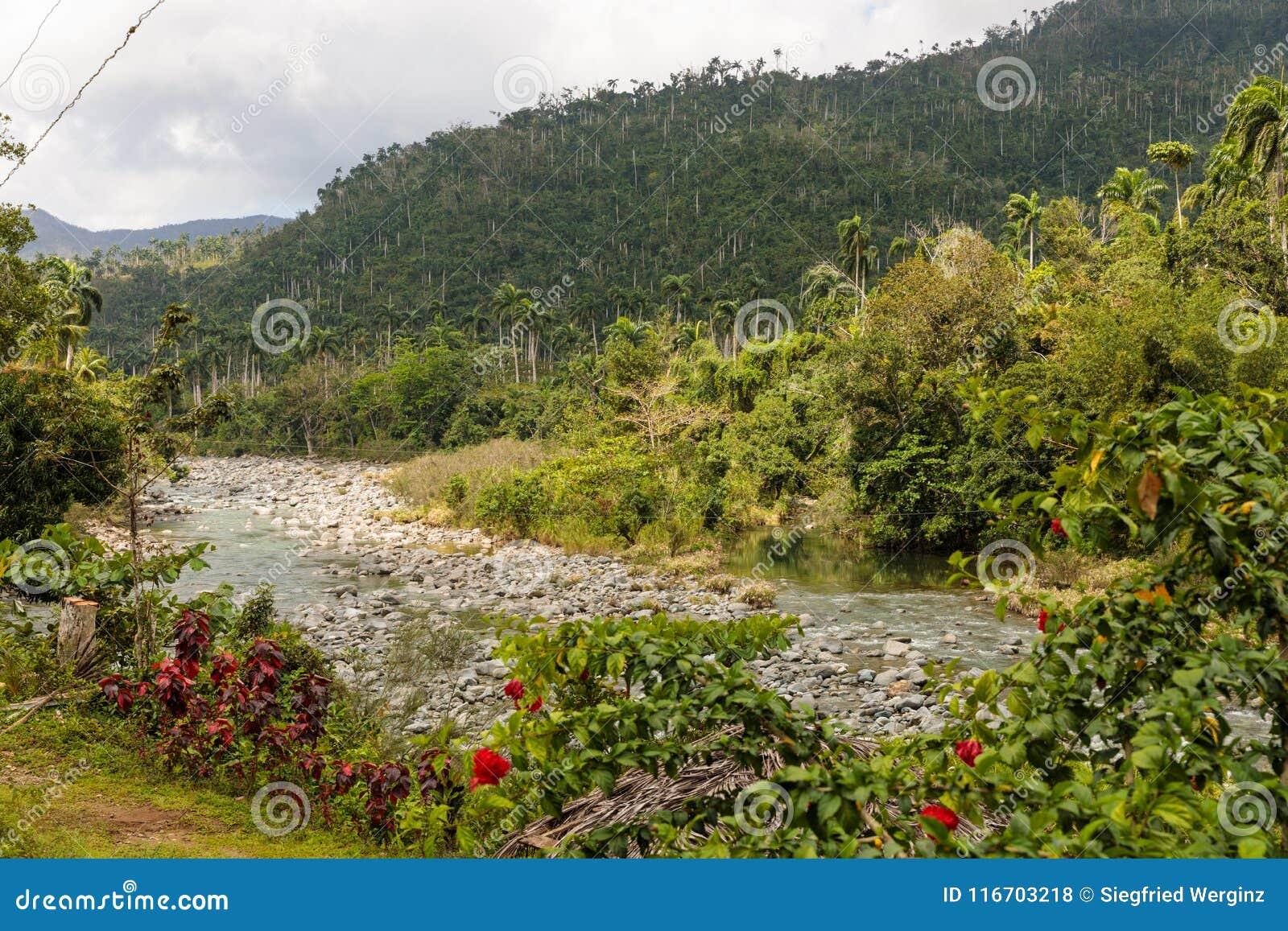 Άποψη σχετικά με εθνικό park alejandro de humboldt με τον ποταμό Κούβα