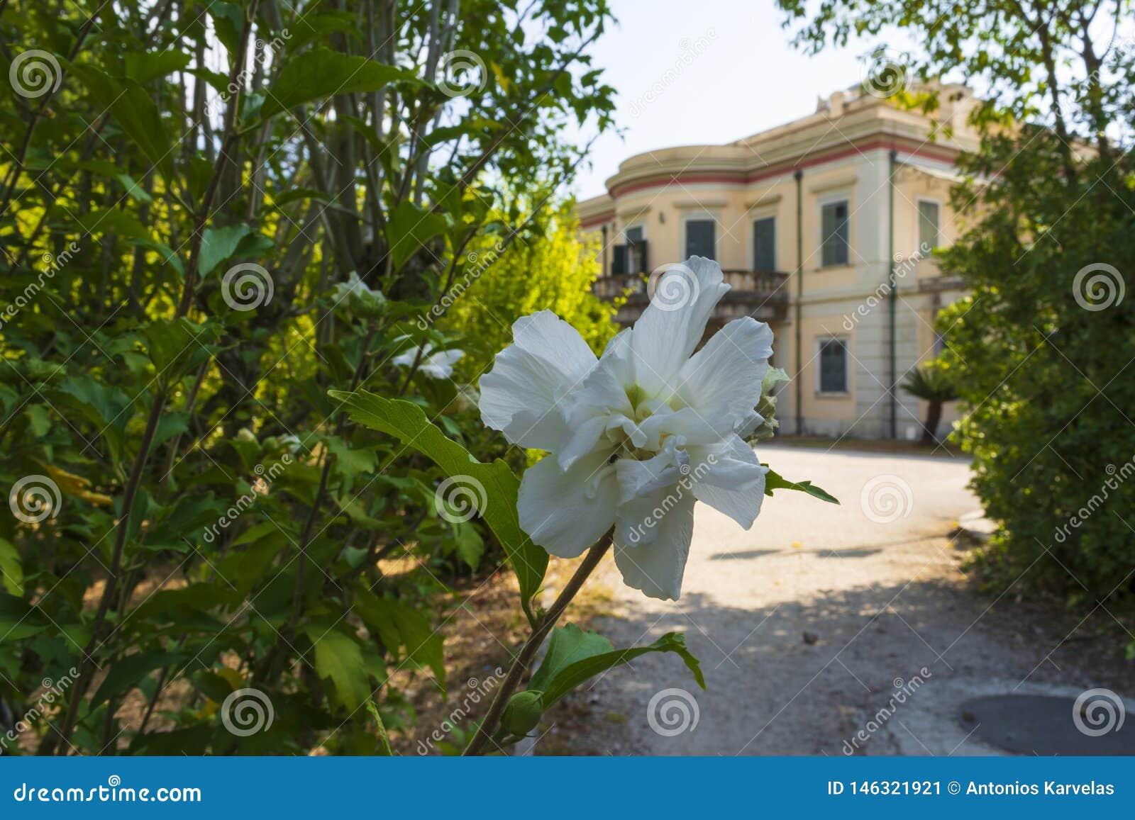 Άποψη του παλατιού Mon Repos στο νησί της Κέρκυρας, Ελλάδα