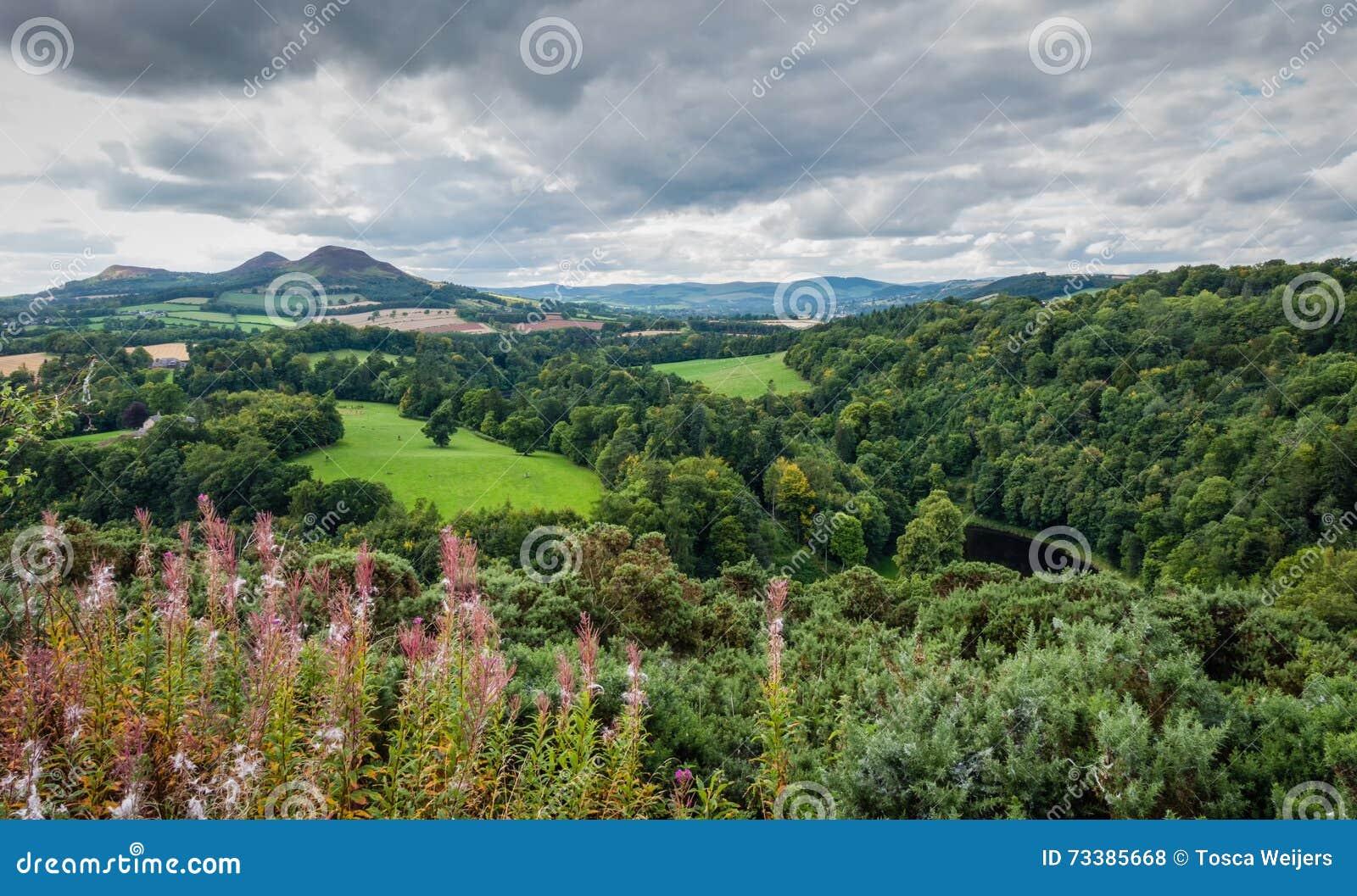 Άποψη του Scott στα σκωτσέζικα σύνορα, Σκωτία