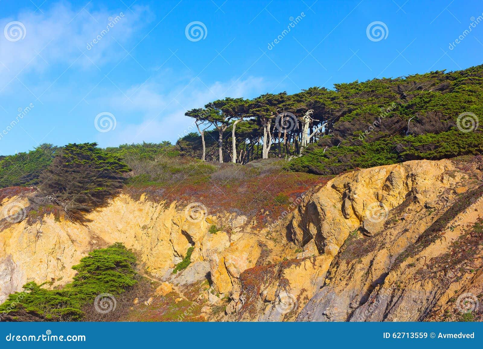 Άποψη των δέντρων που υψώνονται επάνω της επιφυλακής τελών εδαφών