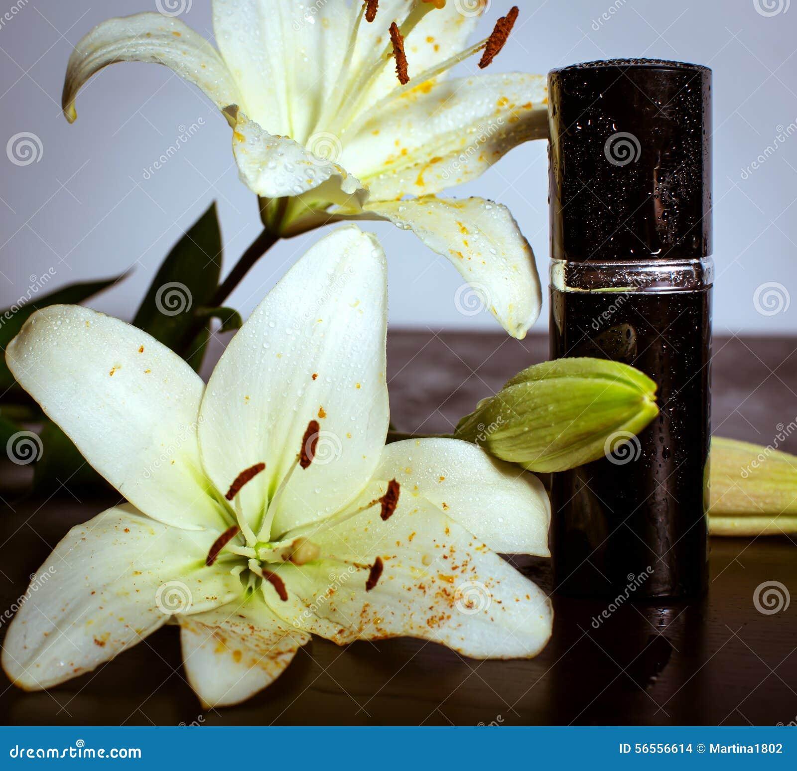 Download Άρωμα και λουλούδια στοκ εικόνες. εικόνα από λουλούδια - 56556614