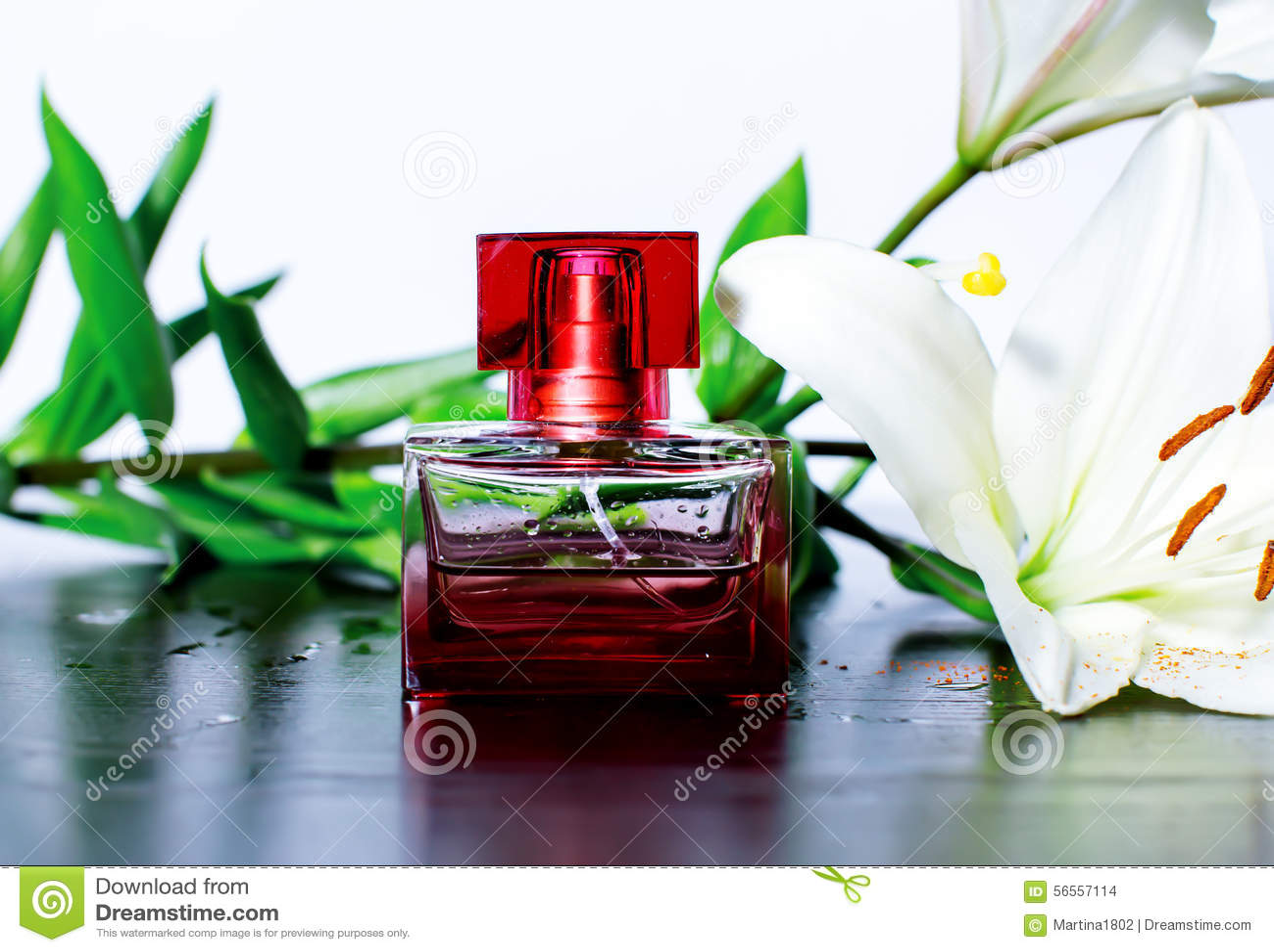 Download Άρωμα με ένα ρόδινο τρυφερό λουλούδι και τις πτώσεις του νερού Στοκ Εικόνες - εικόνα από ροζ, και: 56557114
