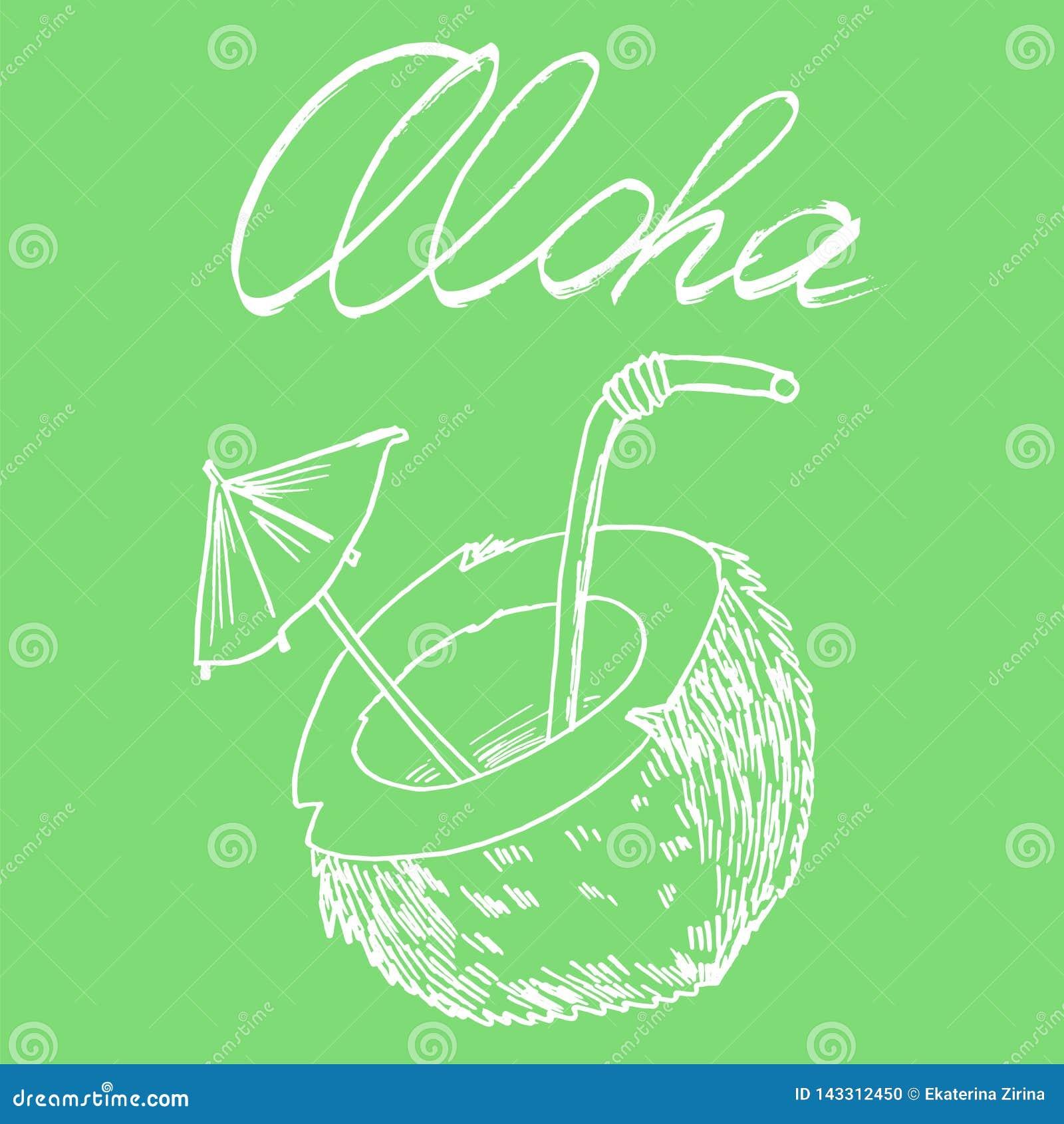 Άσπρη επιγραφή καρύδων και aloha στην πράσινη διανυσματική εικόνα υποβάθρου