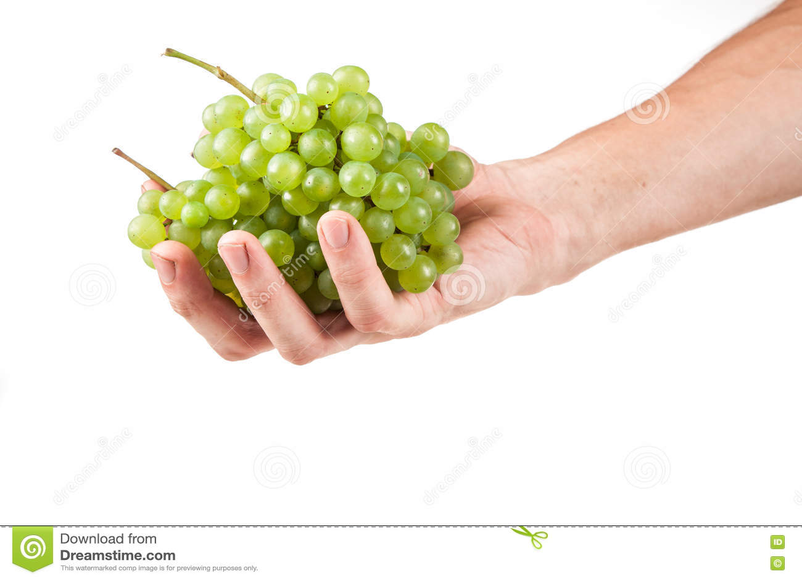 Άσπρος τρύγος κρασιού
