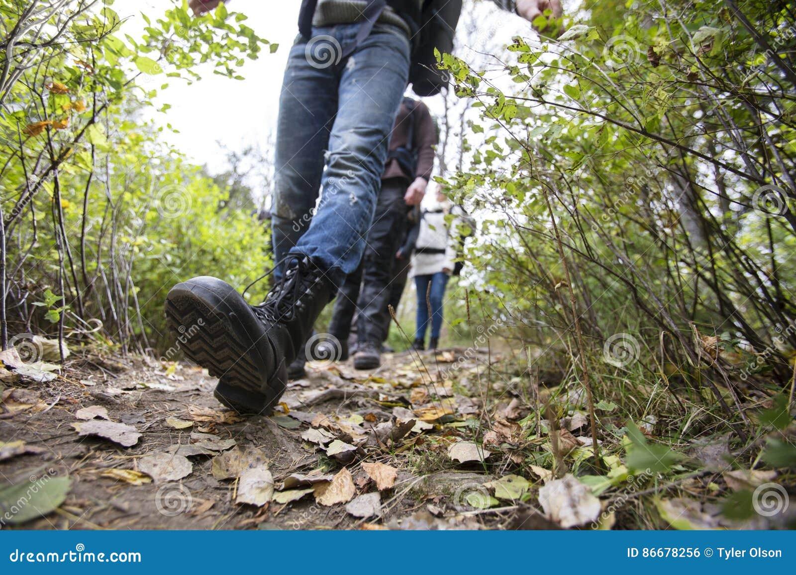 Άτομο με τους φίλους που περπατούν στο ίχνος πεζοπορίας