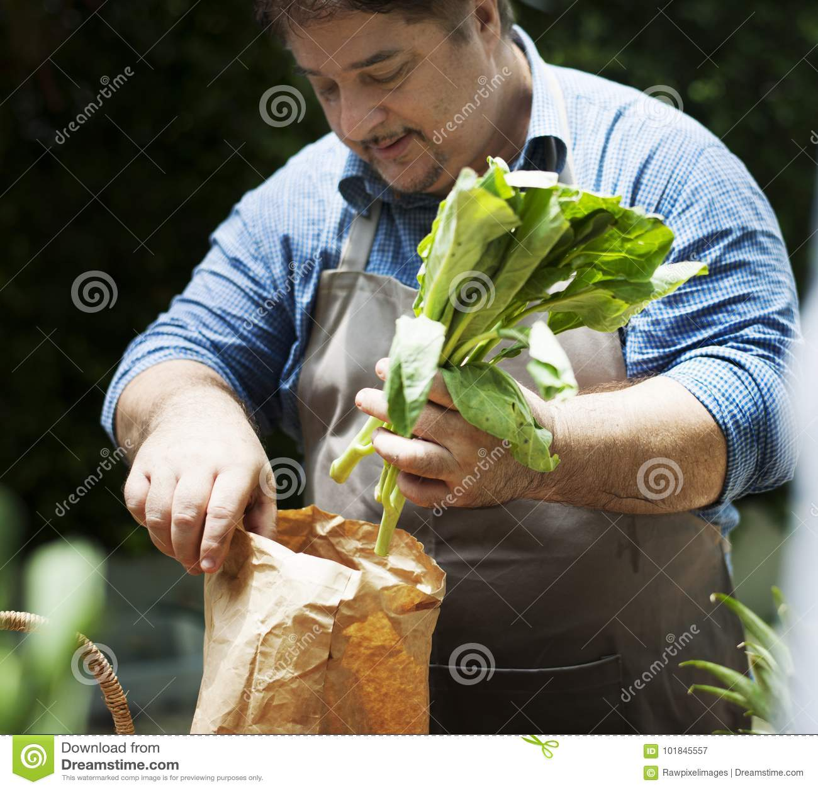 Άτομο που αγοράζει το φρέσκο οργανικό λαχανικό από την αγορά