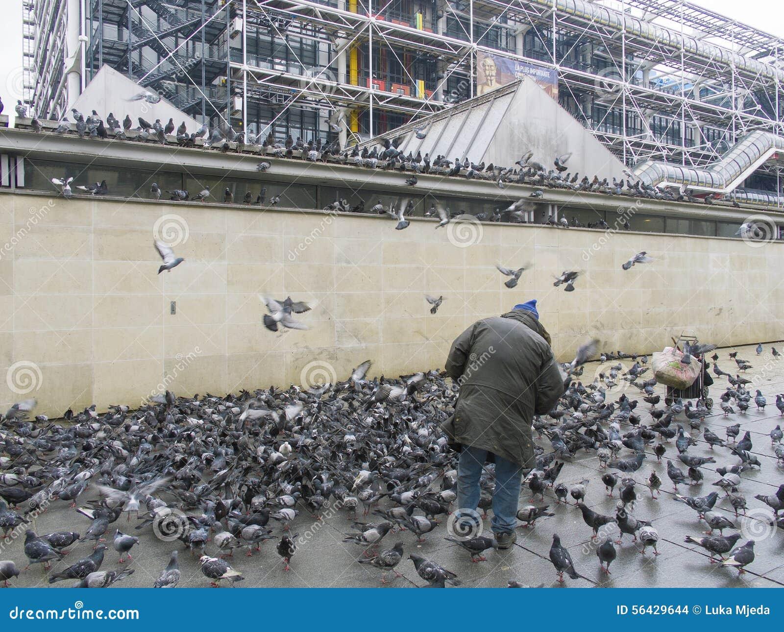 Άτομο που περιβάλλεται από τα περιστέρια, Παρίσι, Γαλλία, 2012