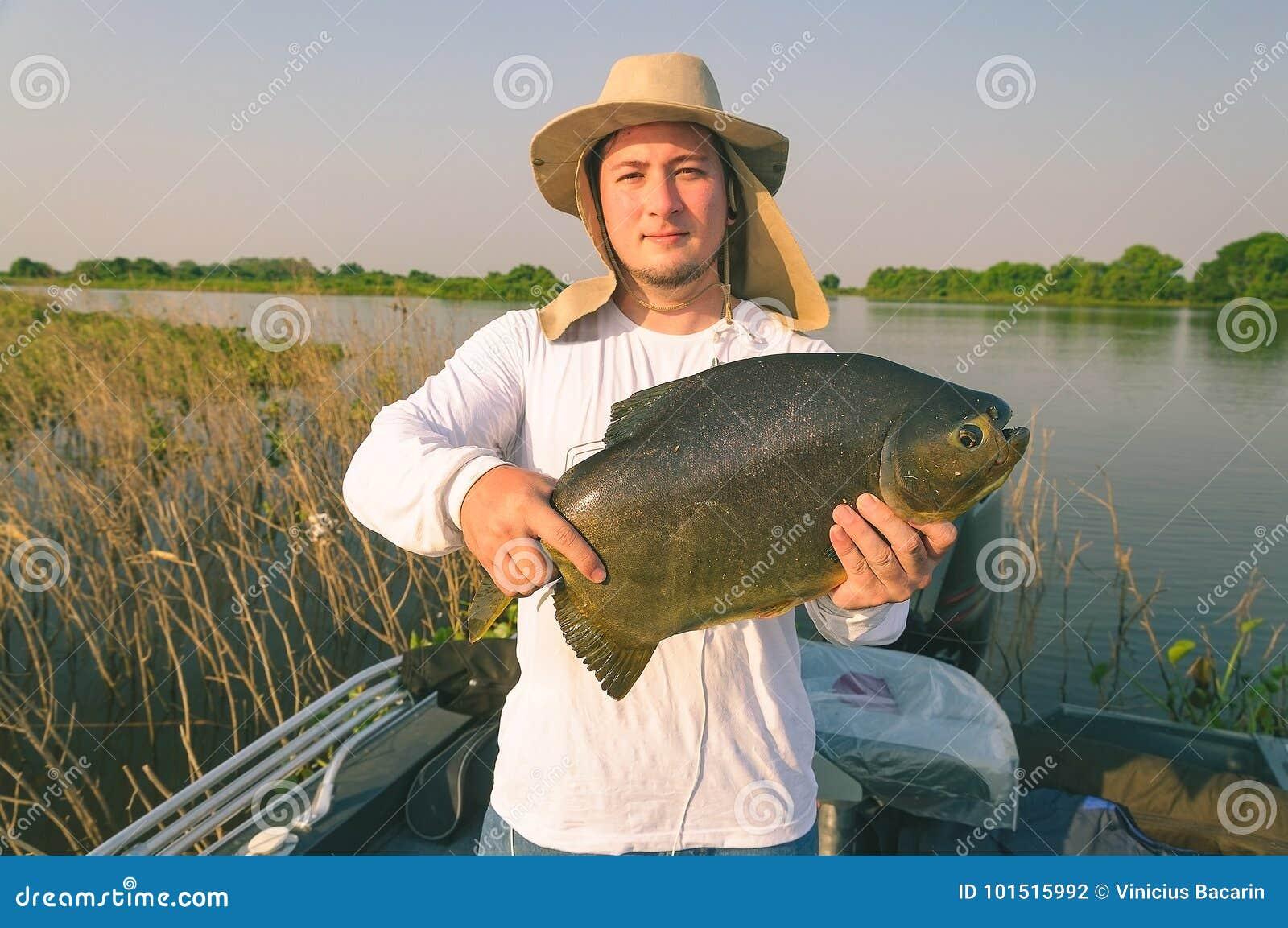 cda5249be30 Ψαράς που κρατά ένα ψάρι γνωστό ως Pacu Άτομο που χρησιμοποιεί το καπέλο  και το άσπρο πουκάμισο που κρατούν ένα ψάρι σε μια βάρκα Φωτογραφία που  λαμβάνεται ...