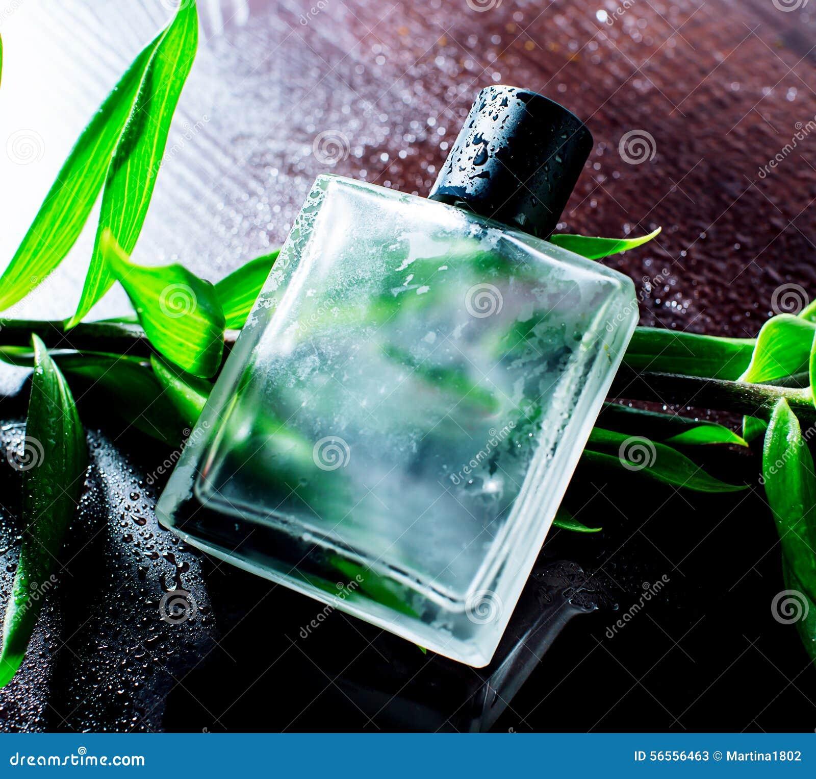 Download Άτομο parfume στοκ εικόνα. εικόνα από λιανικός, γοητεία - 56556463