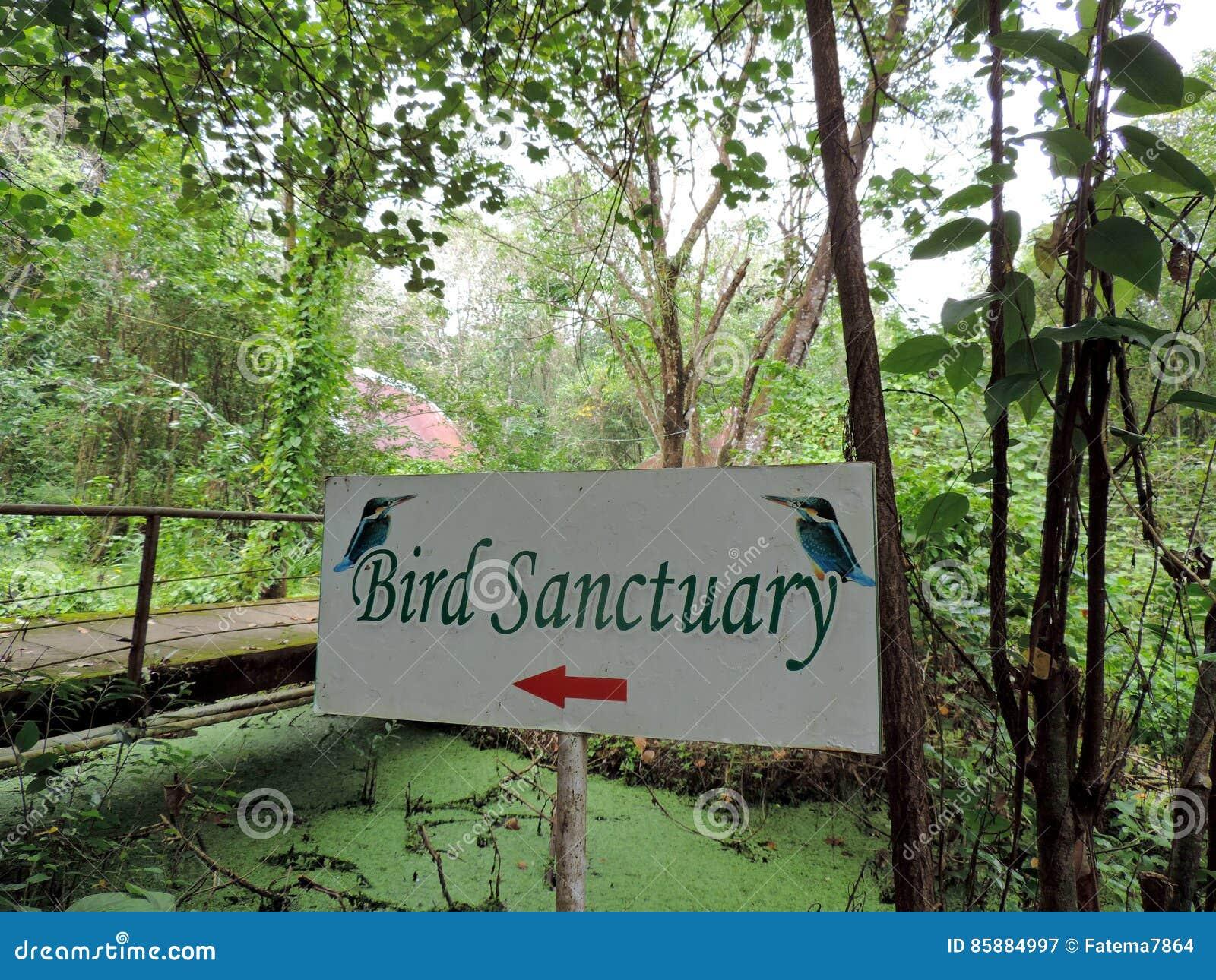 Άδυτο πουλιών Kumarakom στο Κεράλα, Ινδία