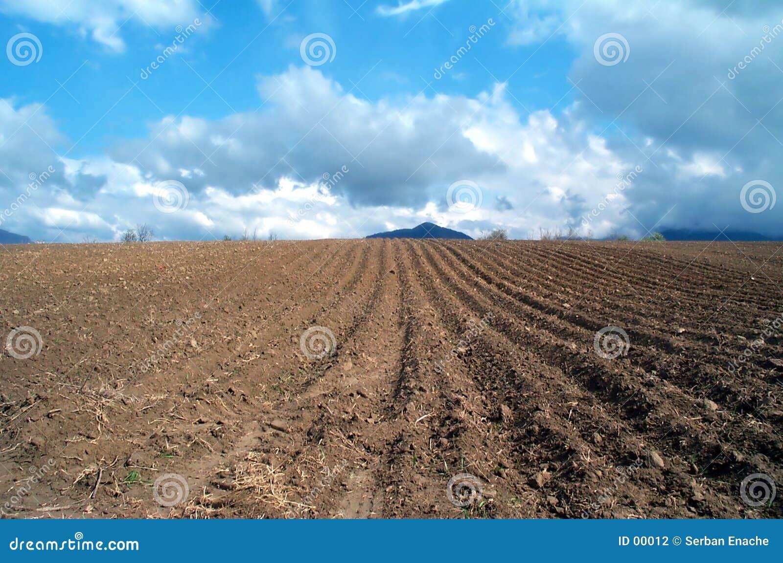 έδαφος που οργώνεται