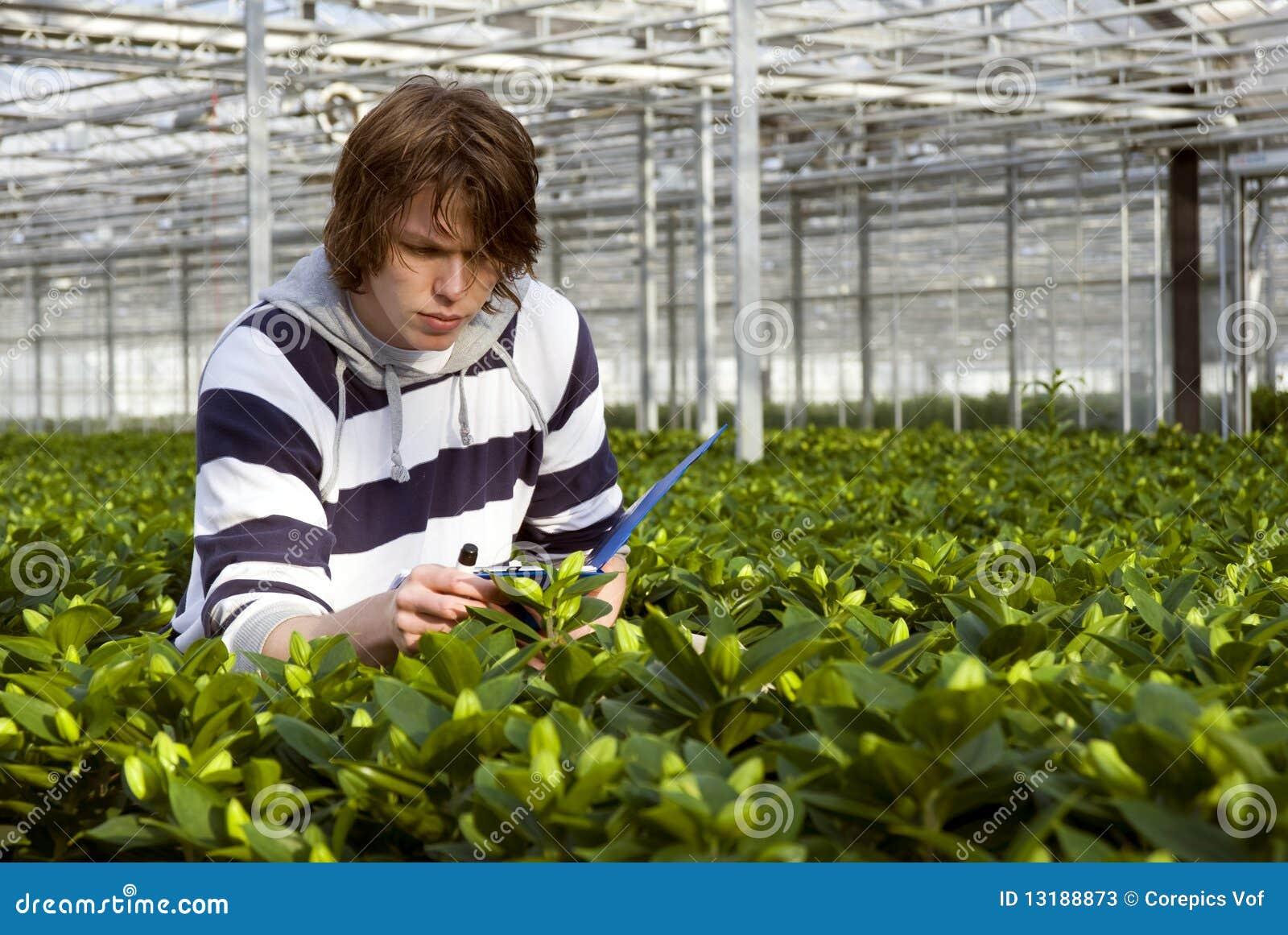 Έλεγχος των φυτών