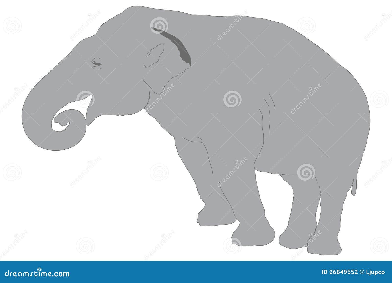 Ένας ελέφαντας
