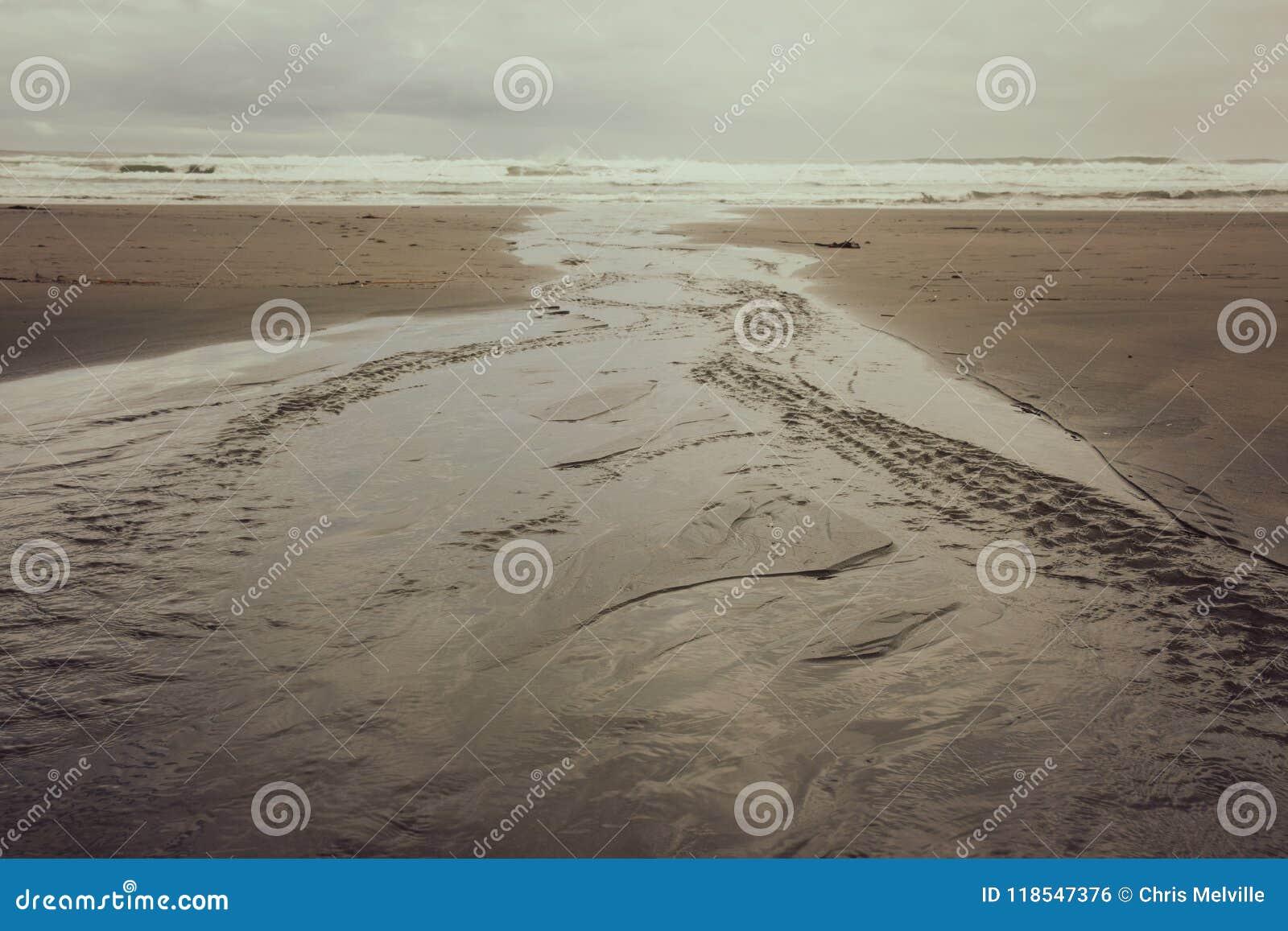 Ένας επίπεδος ποταμός ελιγμού οδηγεί κάτω από την παραλία