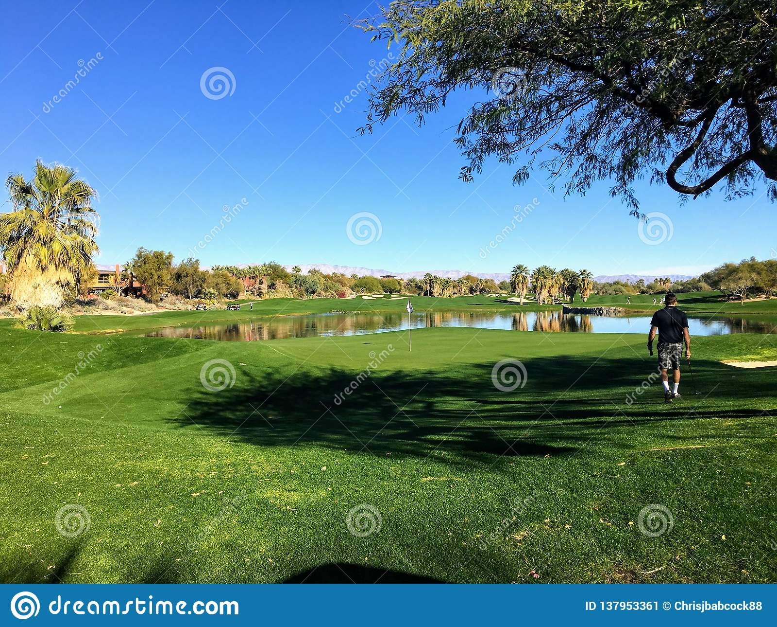 Ένας νέος αρσενικός παίκτης γκολφ που περπατά προς το πράσινο σε μια ισοτιμία 4 που περιβάλλεται από το νερό σε ένα γήπεδο του γκ