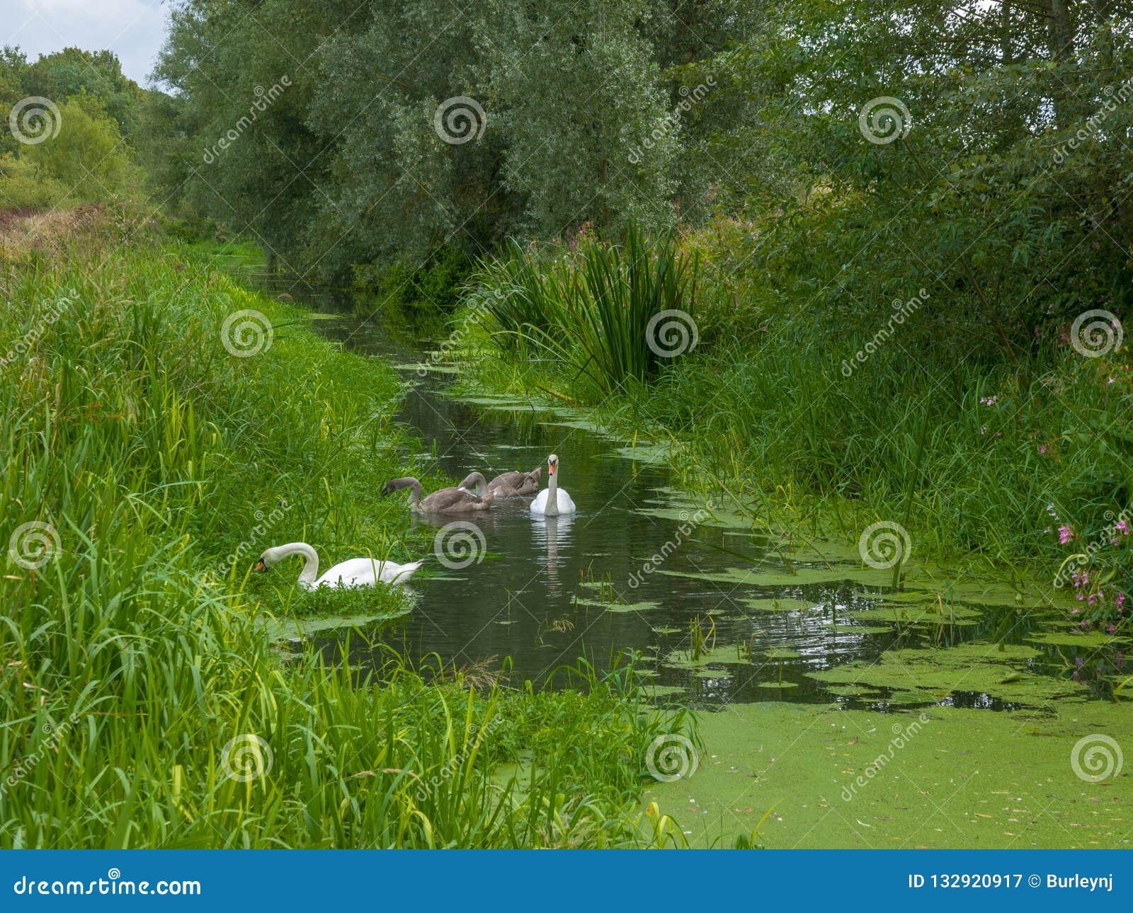 Ένας ποταμός στο UK