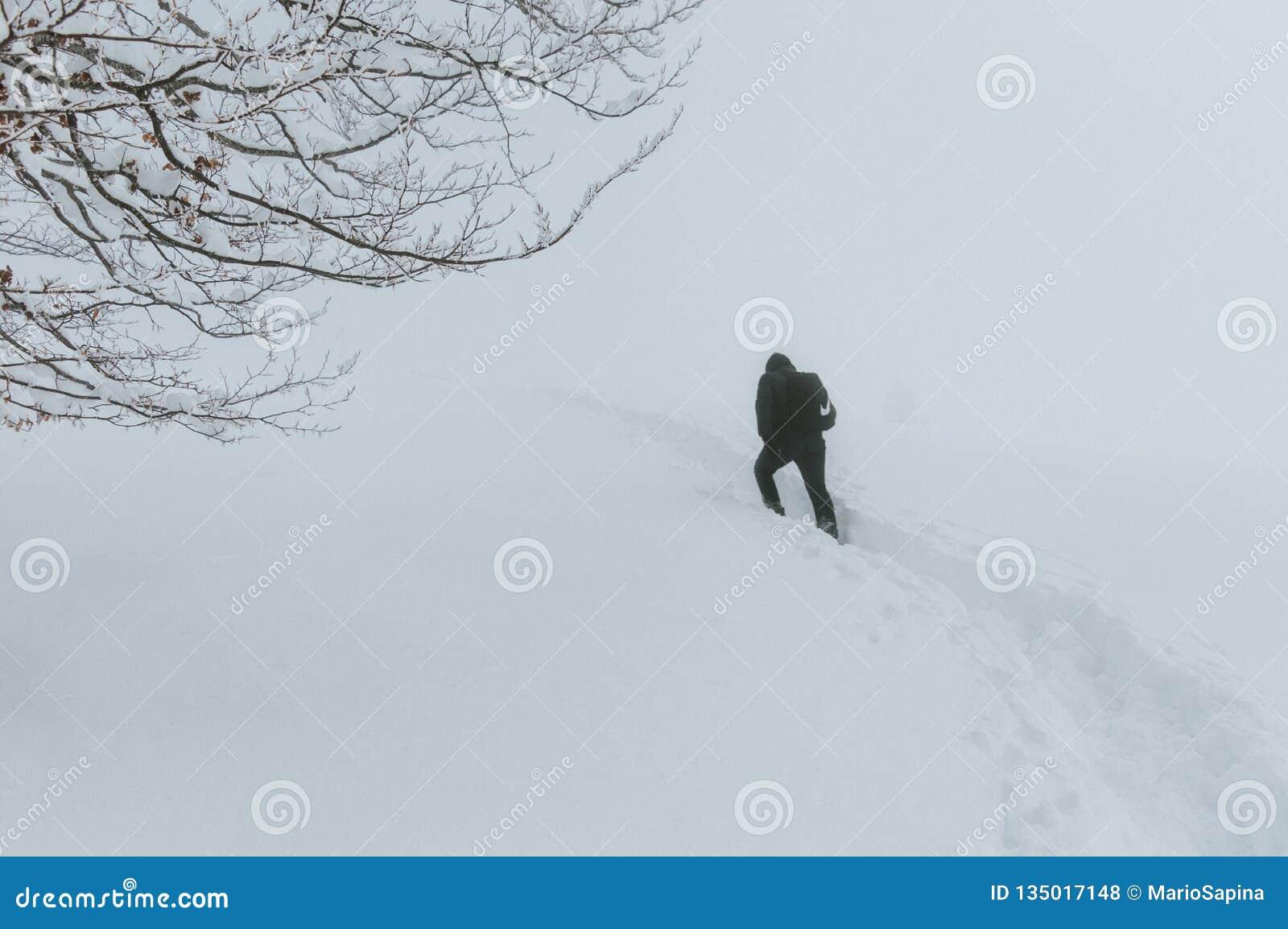 Ένα άτομο περνά από μια θύελλα χιονιού