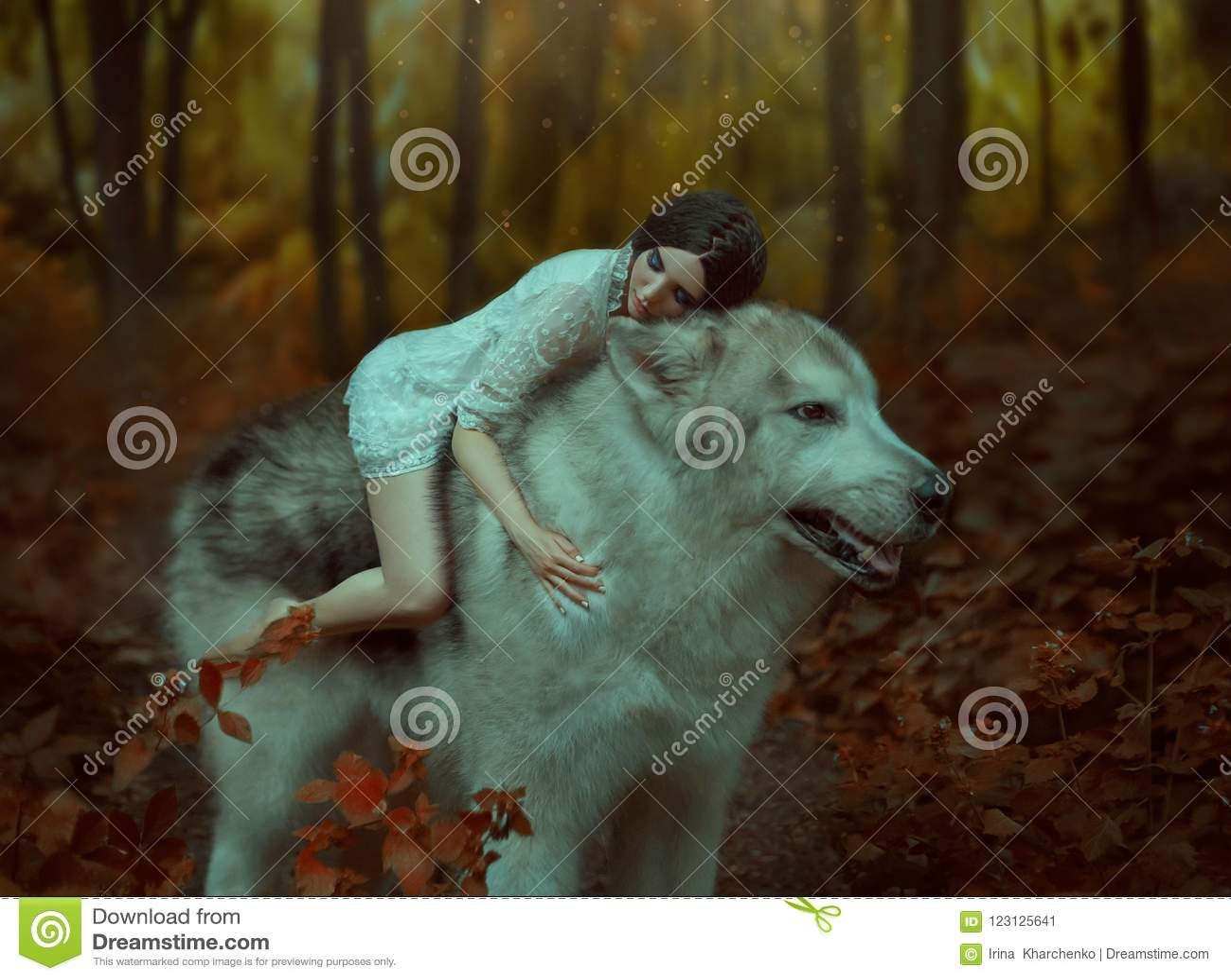 Ένα εύθραυστο κορίτσι που οδηγά έναν λύκο, όπως την πριγκήπισσα Mononoke dof ομορφιάς σκυλιών εστίασης ρηχός ύπνος μύτης s εικόνα