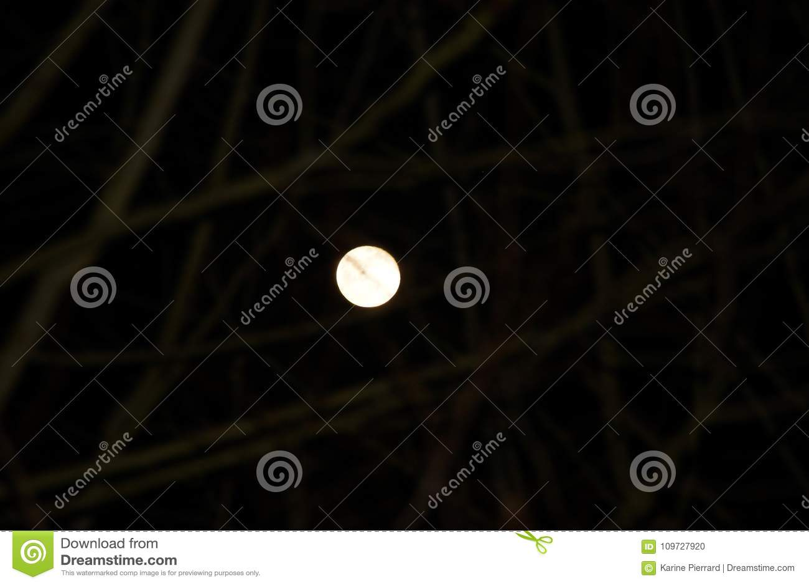 Ένα λαμπρό σεληνόφωτο