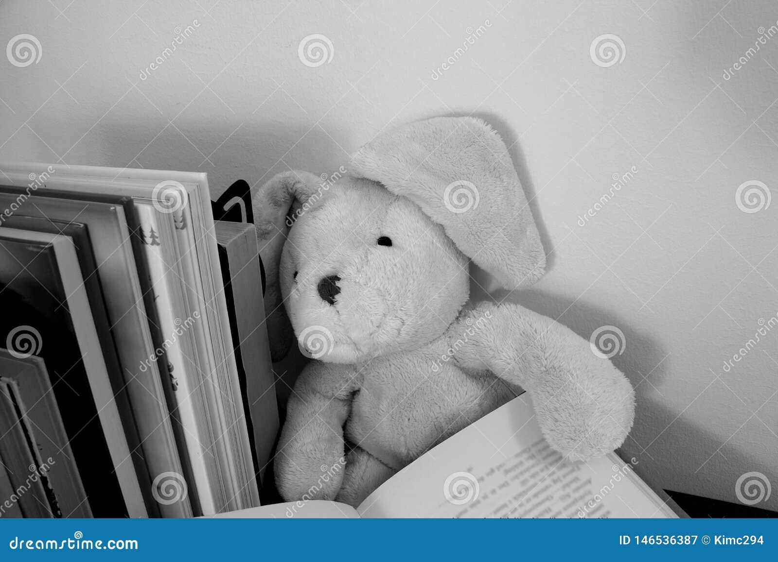 Ένα μαλακό κουνέλι παιχνιδιών με τα πλαδαρά αυτιά κάθεται με ένα ανοικτό βιβλίο στα χέρια του