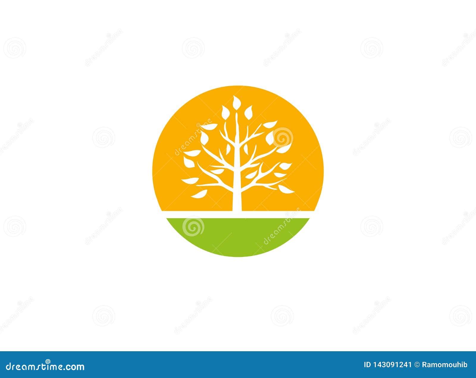 Ένα φυλλώδες δέντρο για ένα γεωργικό χώμα και οι εγκαταστάσεις με το μεγάλο ήλιο για την καλλιέργεια των ηλιακών εγκαταστάσεων γι