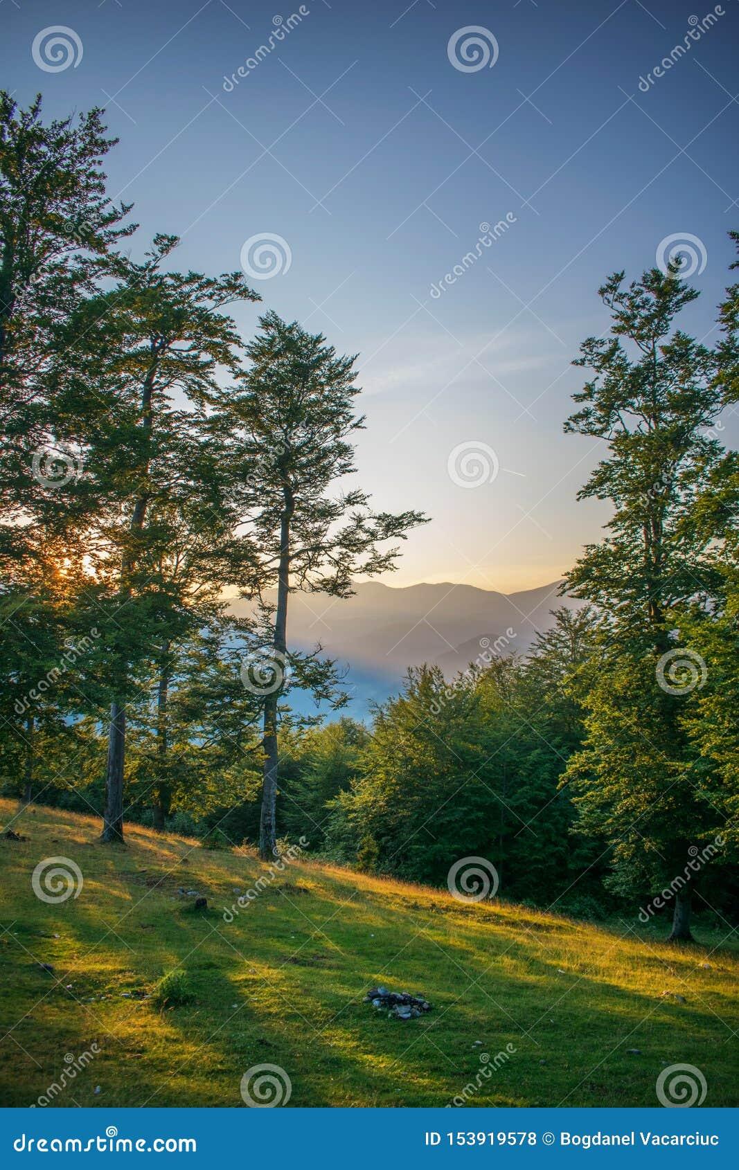 Ένα όμορφο τοπίο βουνών στο ηλιοβασίλεμα Μια όμορφη θερινή ημέρα Ο ήλιος κατεβαίνει πίσω από τα δέντρα Ένα πανέμορφο φως