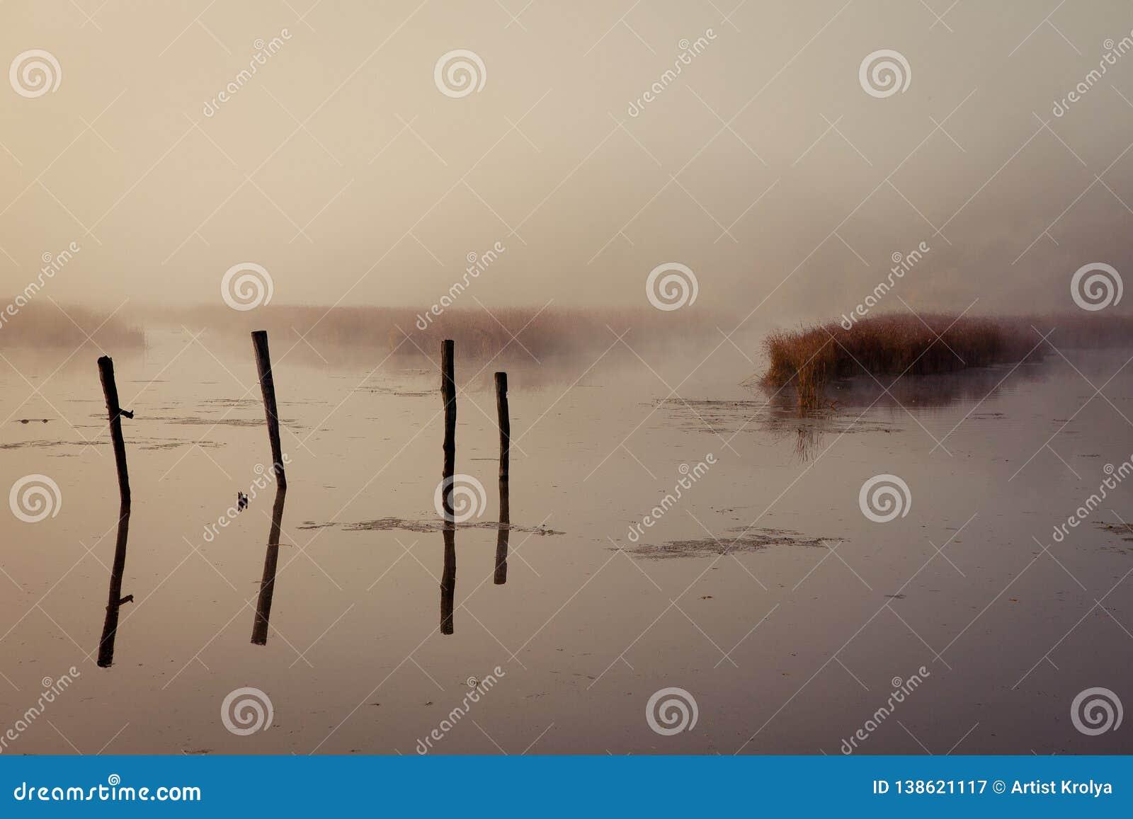 Ένα misty πρωί από τη λίμνη Διάστημα για το κείμενο