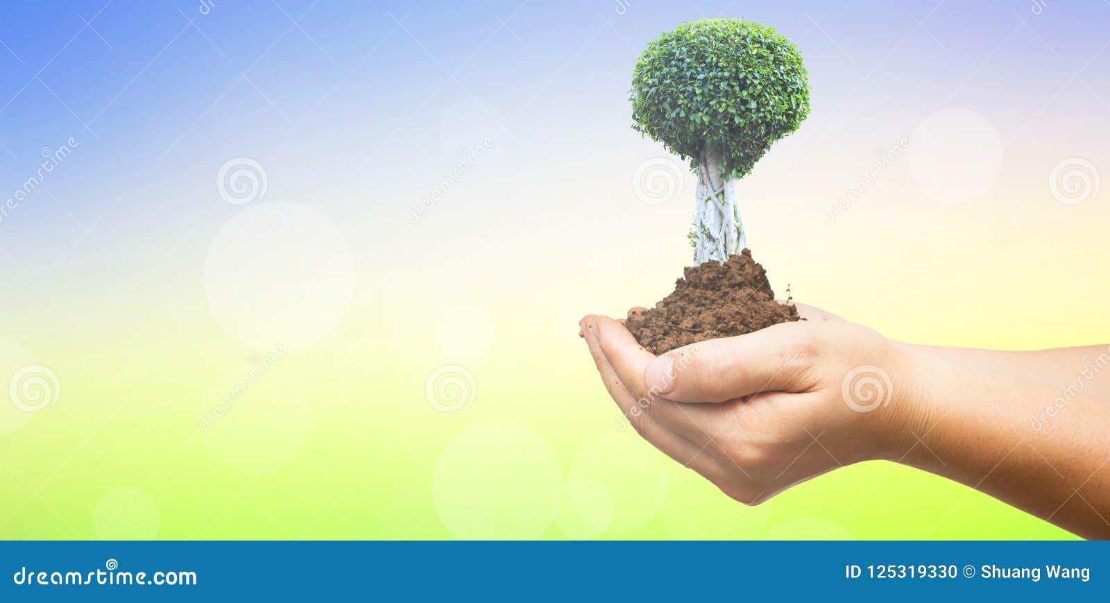 Έννοια ημέρας παγκόσμιου περιβάλλοντος: Ανθρώπινα χέρια που κρατούν το μεγάλο δέντρο πέρα από το πράσινο δασικό υπόβαθρο