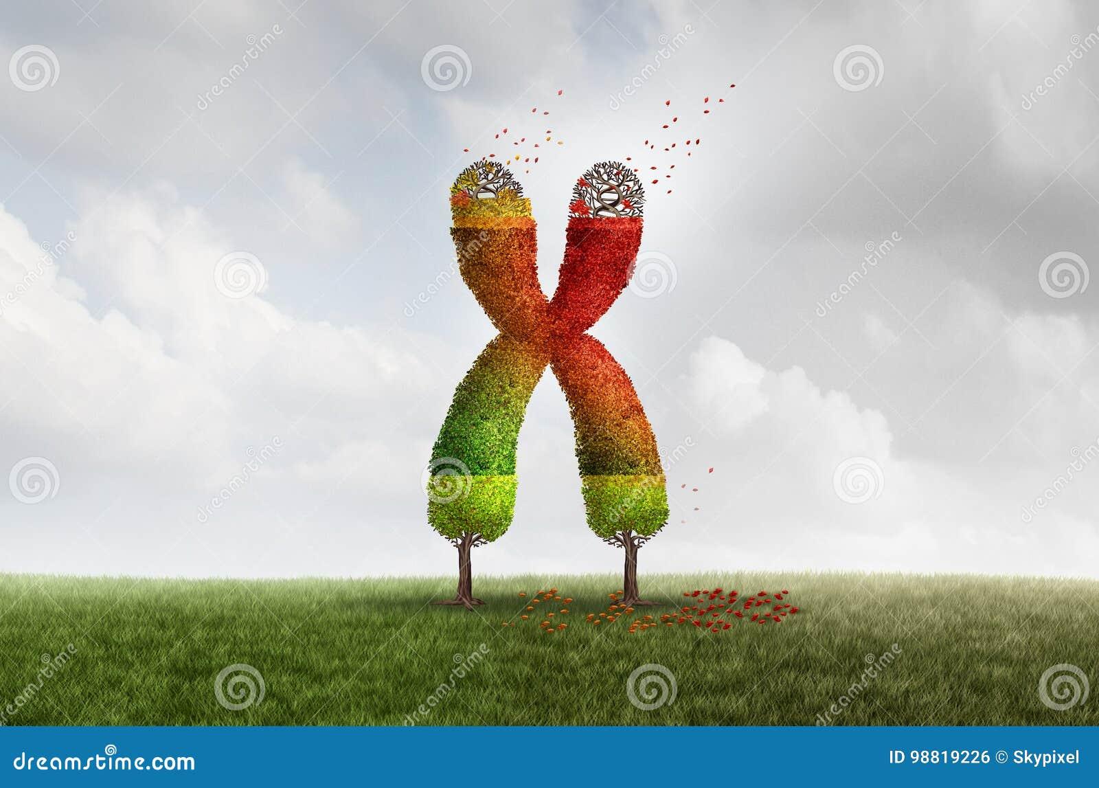 Έννοια υγείας γήρανσης Telomere