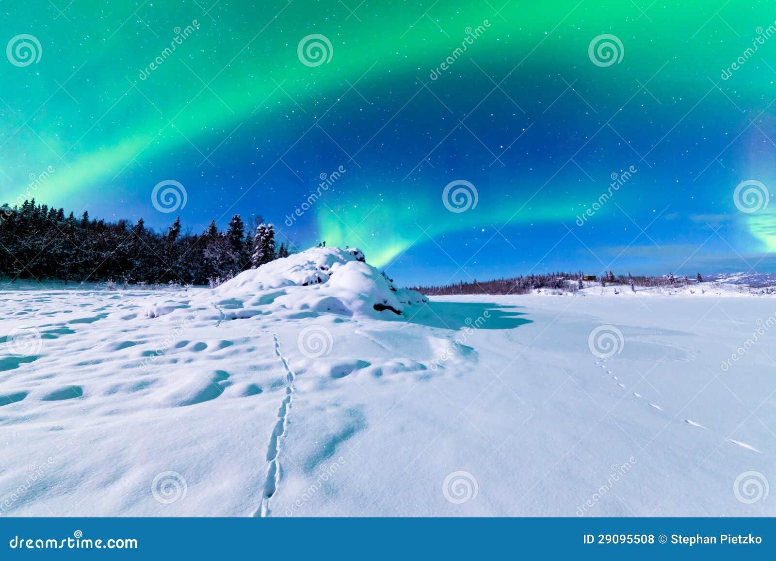 Έντονη παρουσίαση των βόρειων borealis αυγής φω των