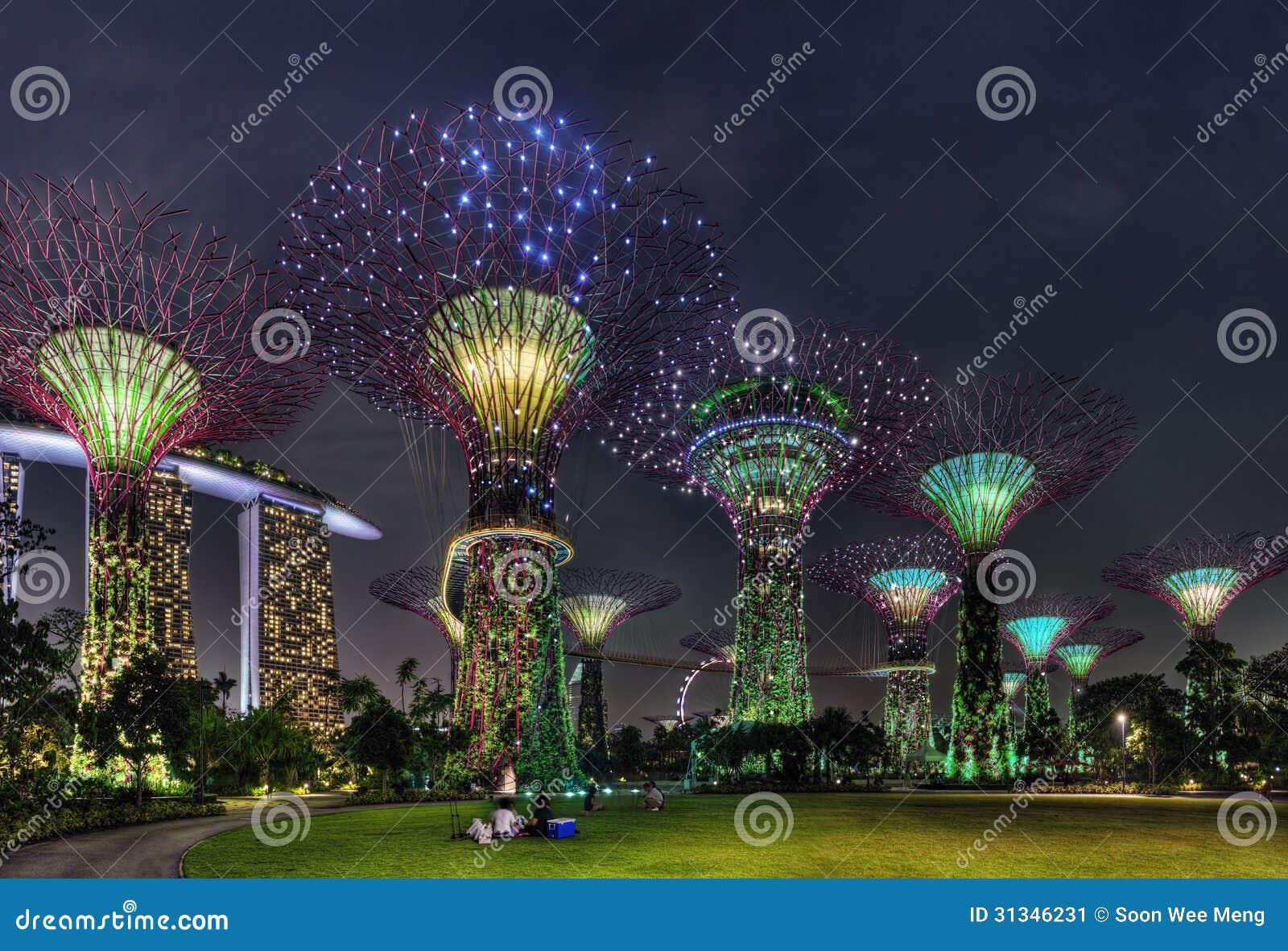 Έξοχη σκηνή νύχτας δέντρων στους κήπους της Σιγκαπούρης από τον κόλπο