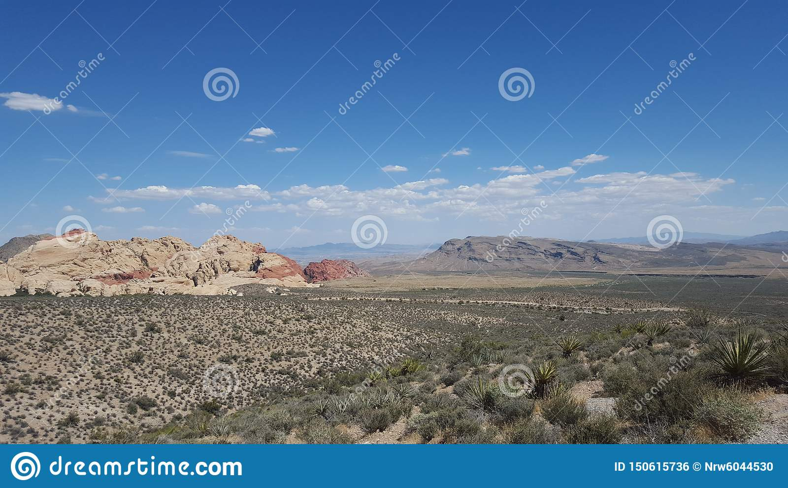 Έρημος του Λας Βέγκας