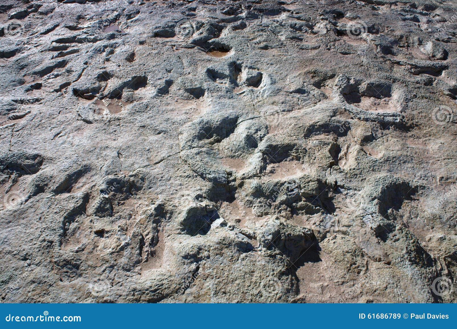Ίχνη δεινοσαύρων